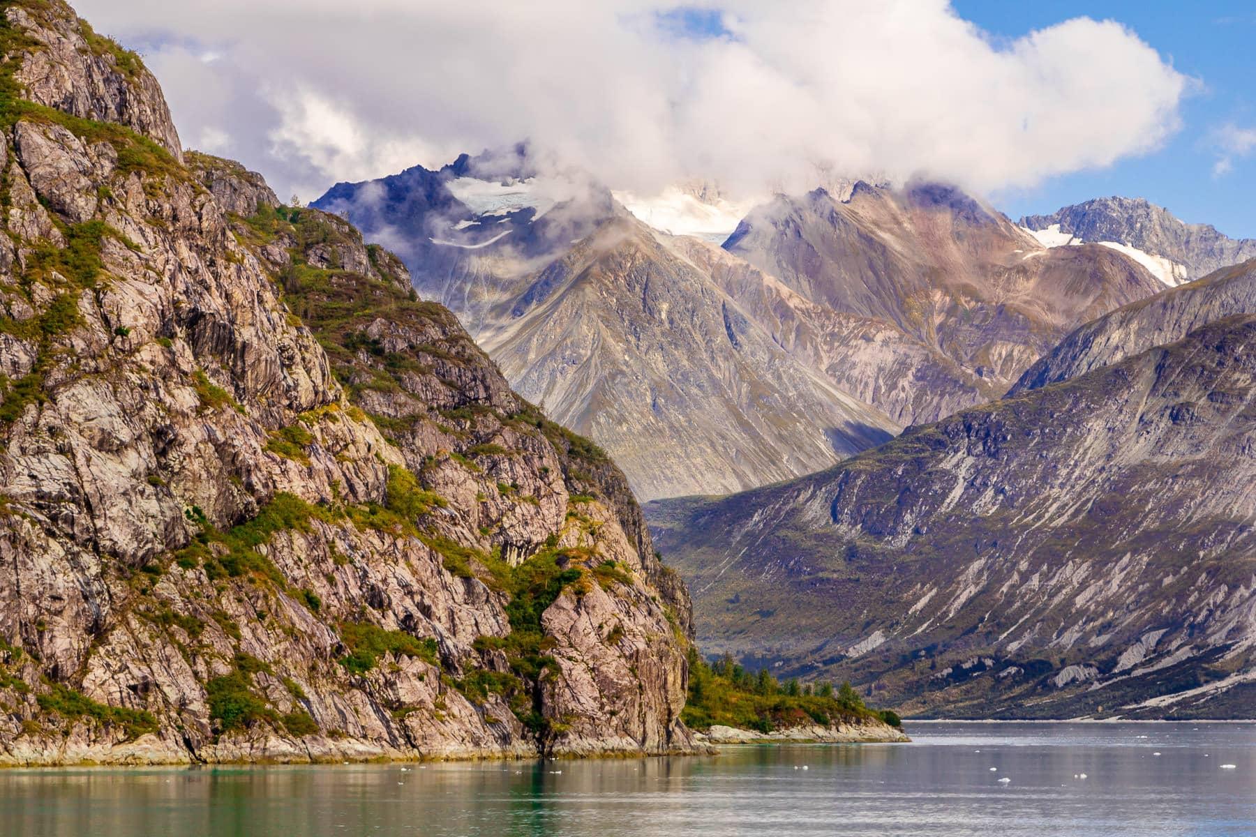 Evergreen trees grow on a rocky mountainside in Alaska's Glacier Bay National Park.