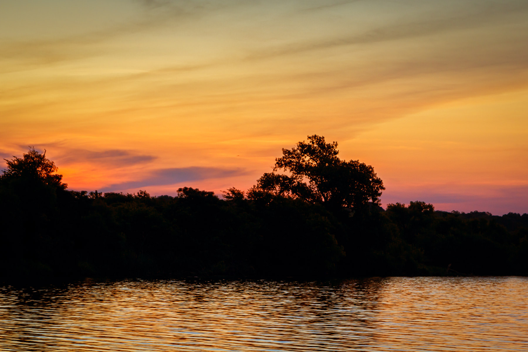 Trees on the shore of Dallas' White Rock Lake are silhouetted by the rising sun.