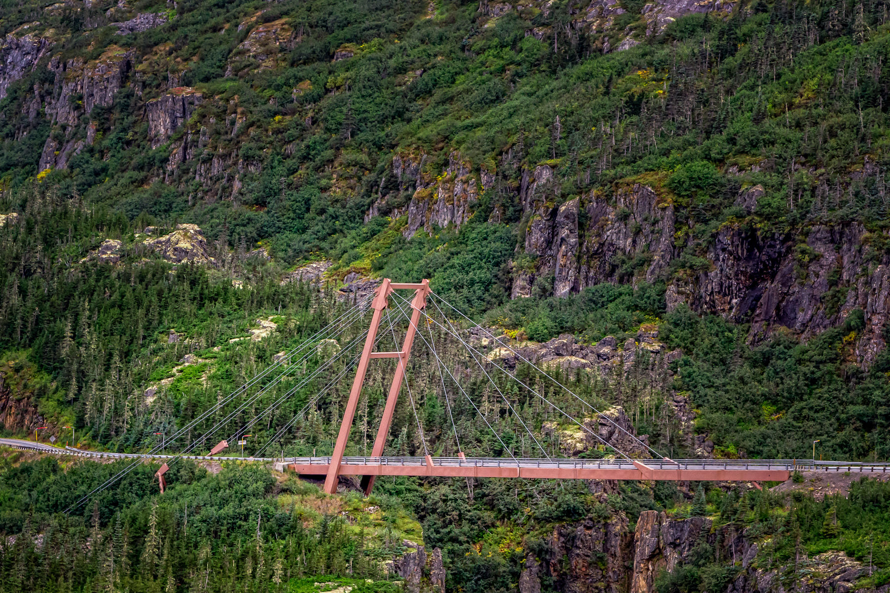 The Captain William Moore Suspension Bridge on the Klondike Highway near Skagway, Alaska. Interestingly, this bridge is only anchored on one side in the hopes that it won't collapse in the event of an earthquake.