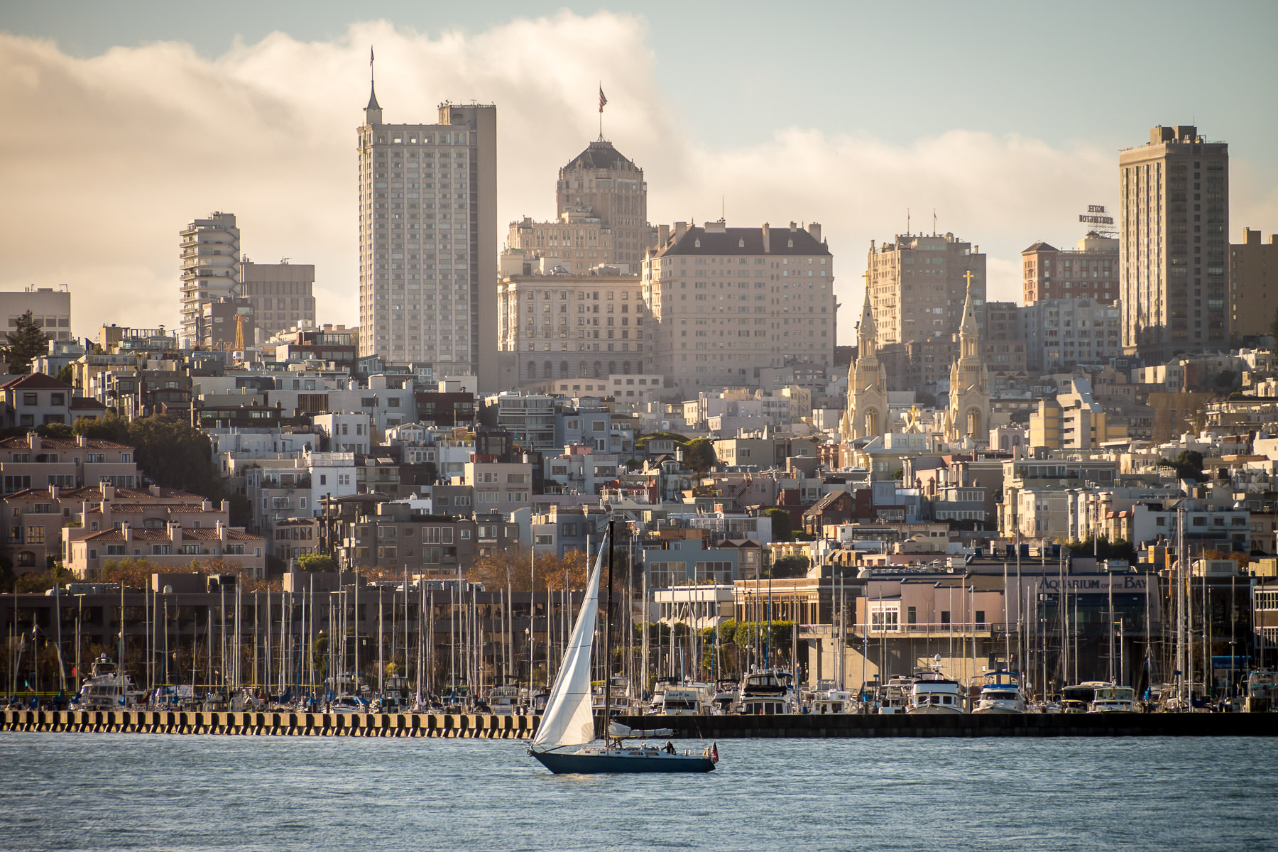 A sailboat cruises San Francisco Bay as the morning sun begins to light up the city.