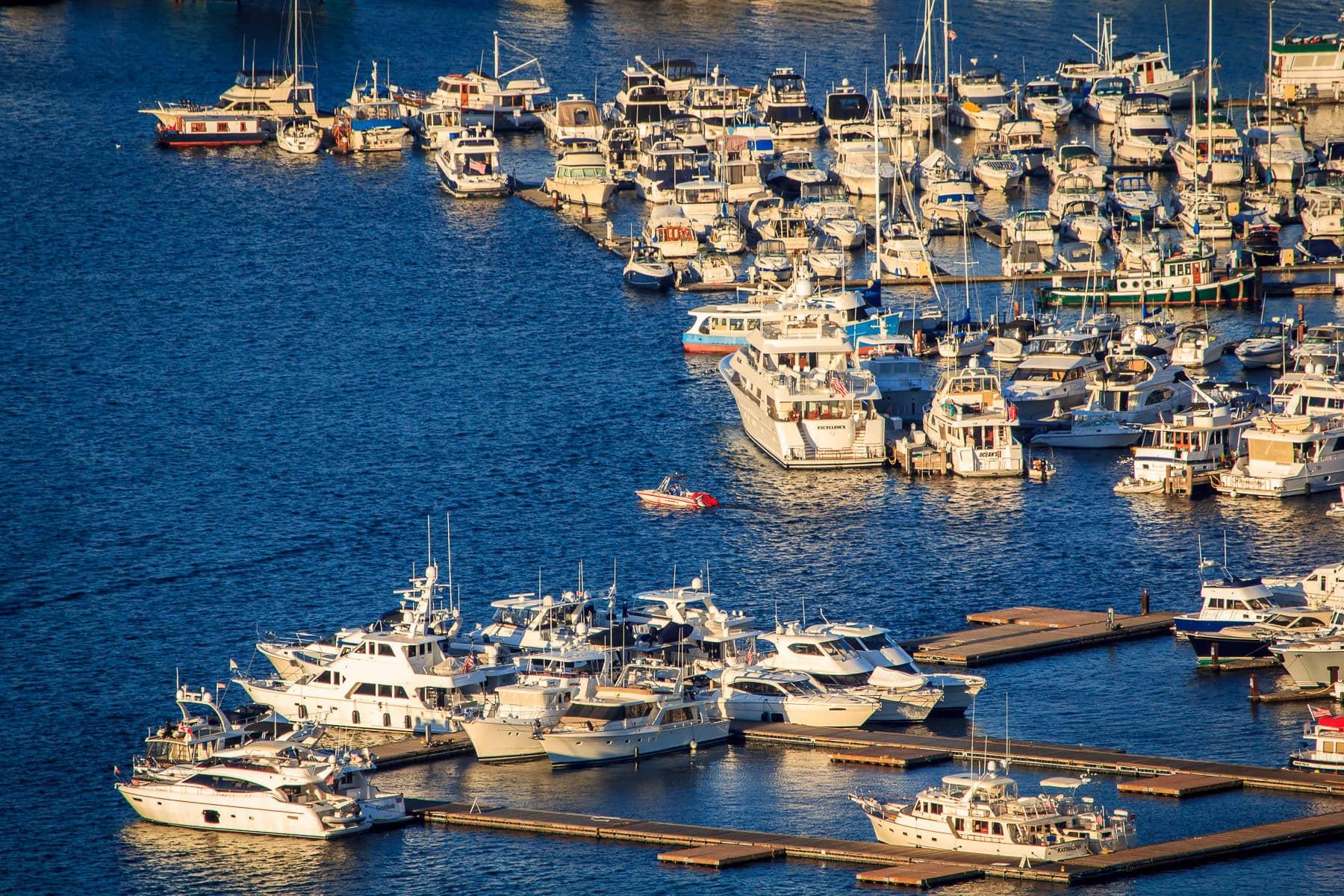 Boats docked at a marina along Seattle's waterfront.