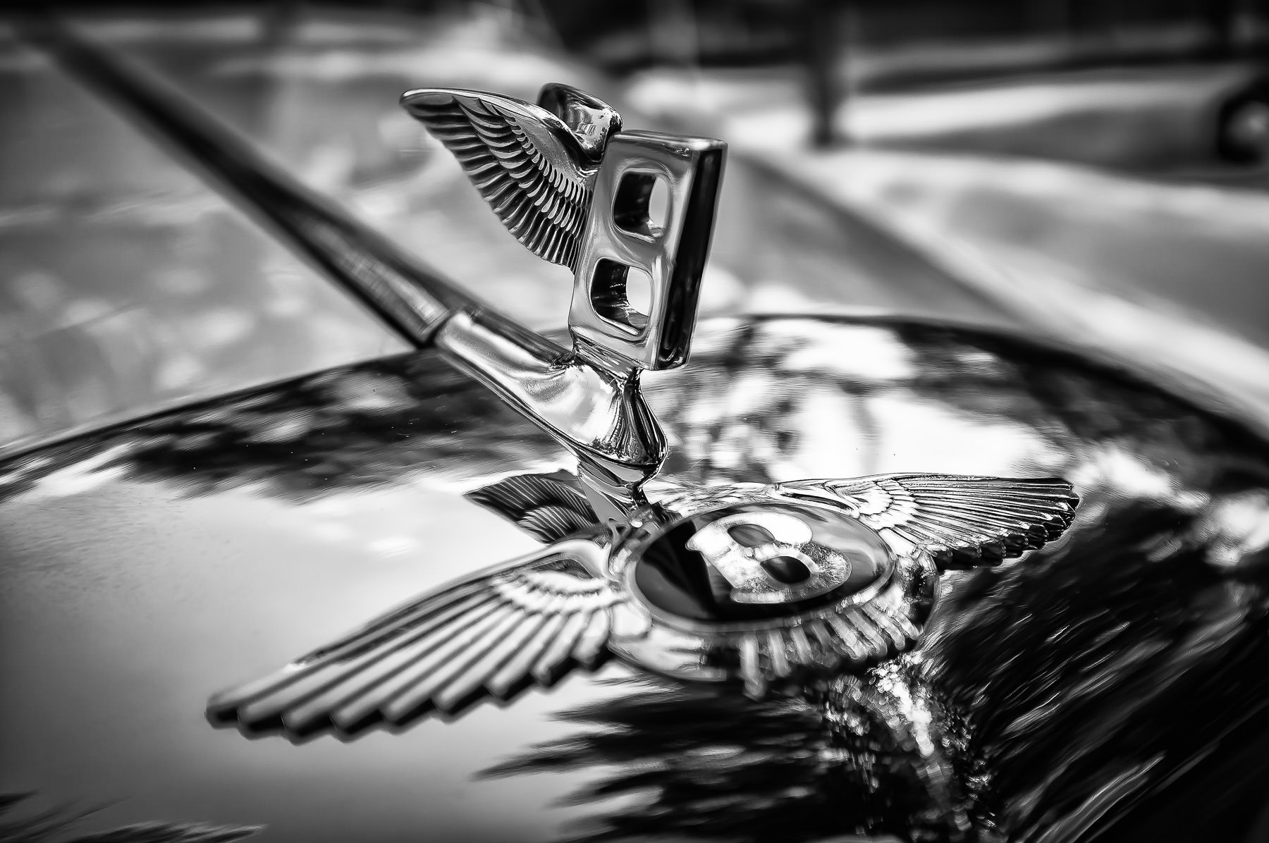 "The hood ornament of a Bentley—known as the ""Flying B""—on a car at Dallas' Autos in the Park car show at the Cooper Aerobics Center."