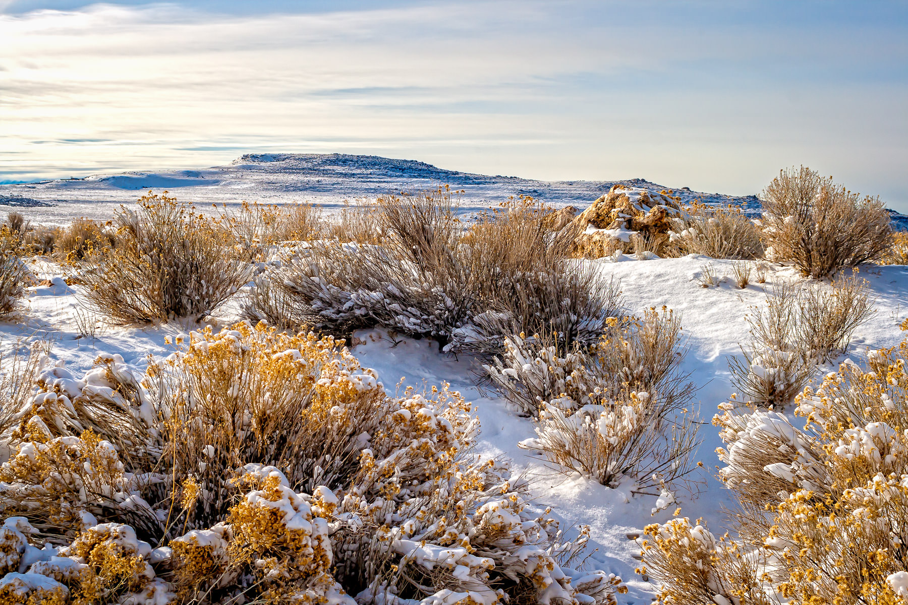 Snow covers the brushy, rocky landscape of the Great Salt Lake's Antelope Island in Utah.