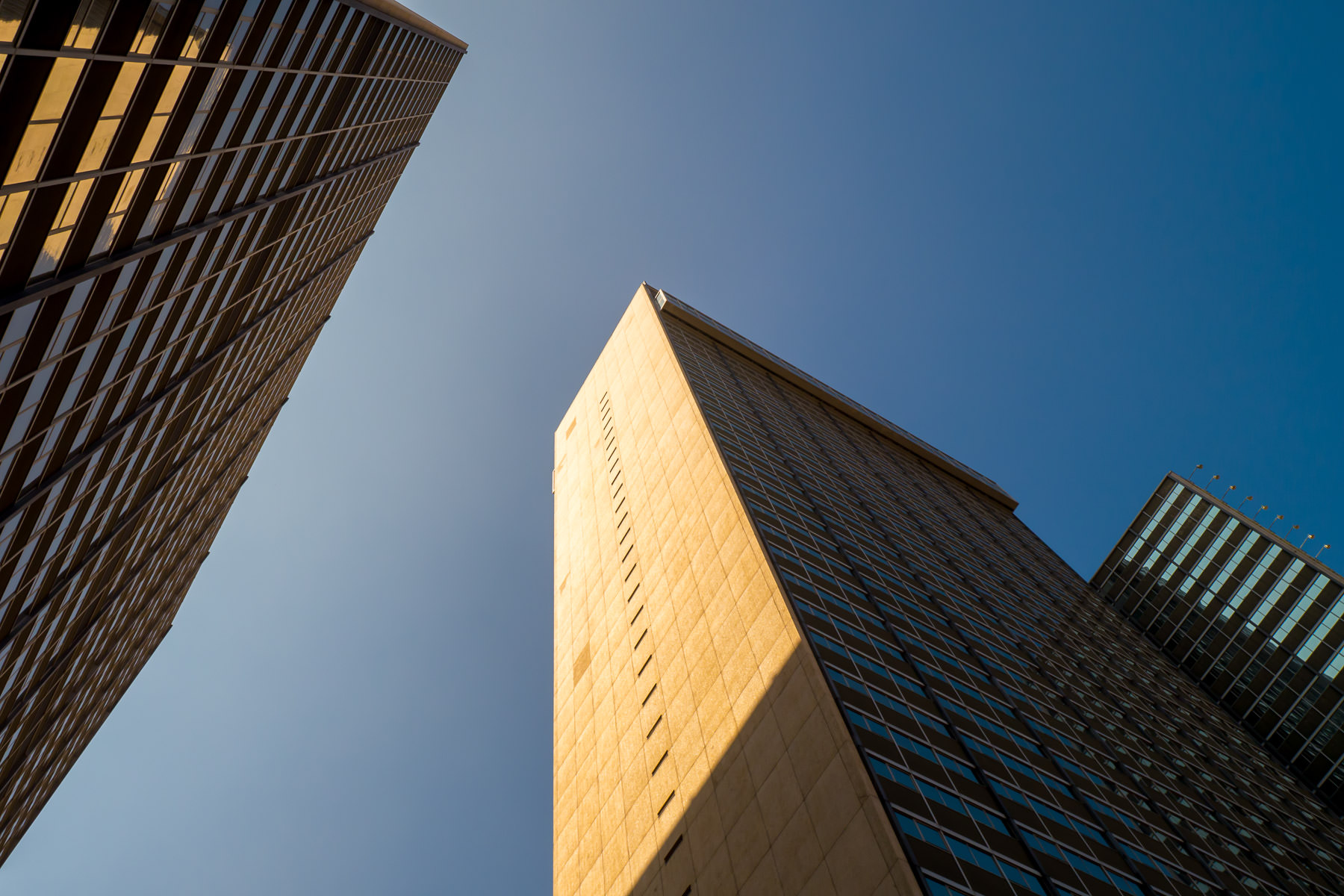 The Sheraton Hotel in Downtown Dallas' towers reach for the clear North Texas sky.