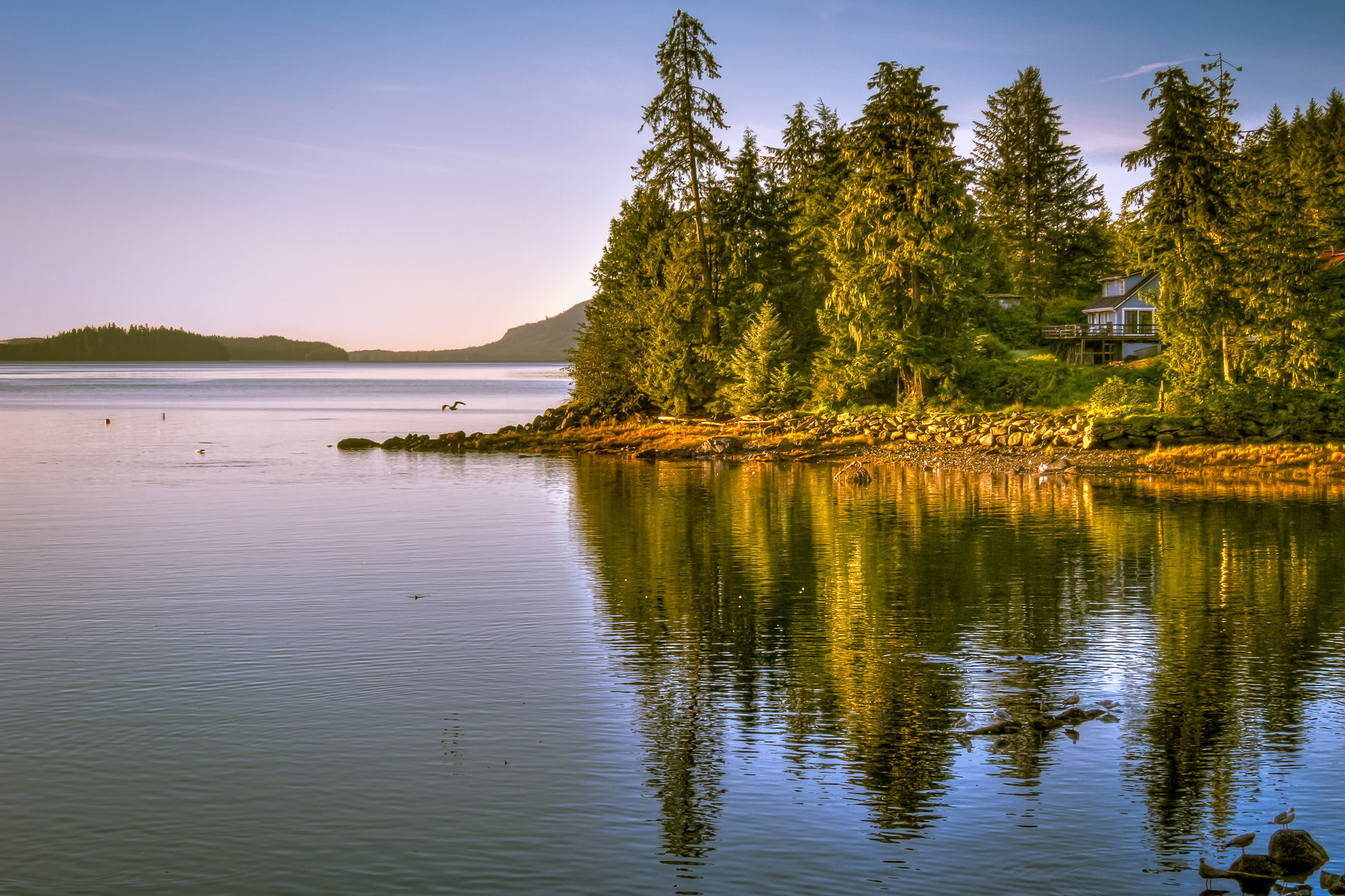 The morning sun begins to illuminate the shoreline of Herring Cove, just outside of Ketchikan, Alaska.