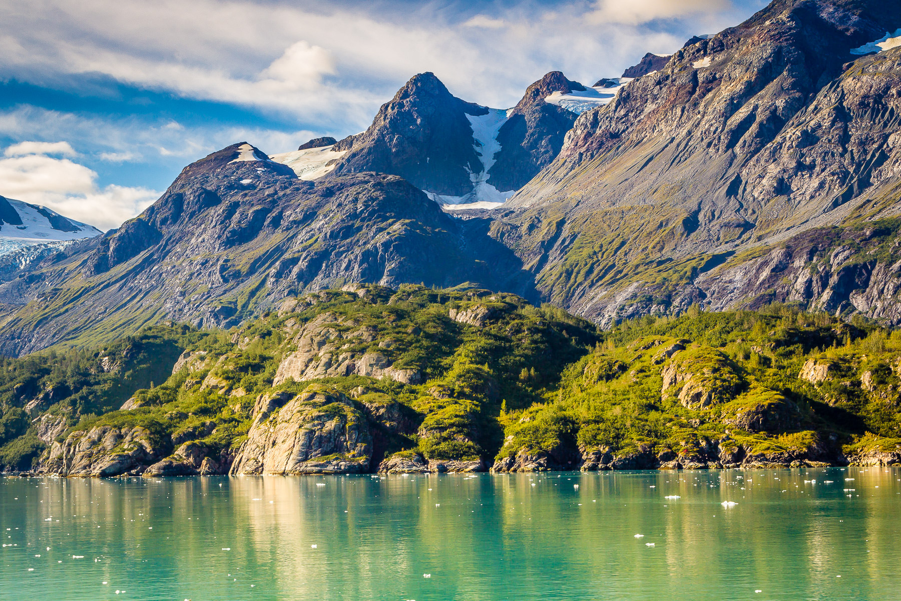Trees grow along the shoreline of Alaska's Glacier Bay.