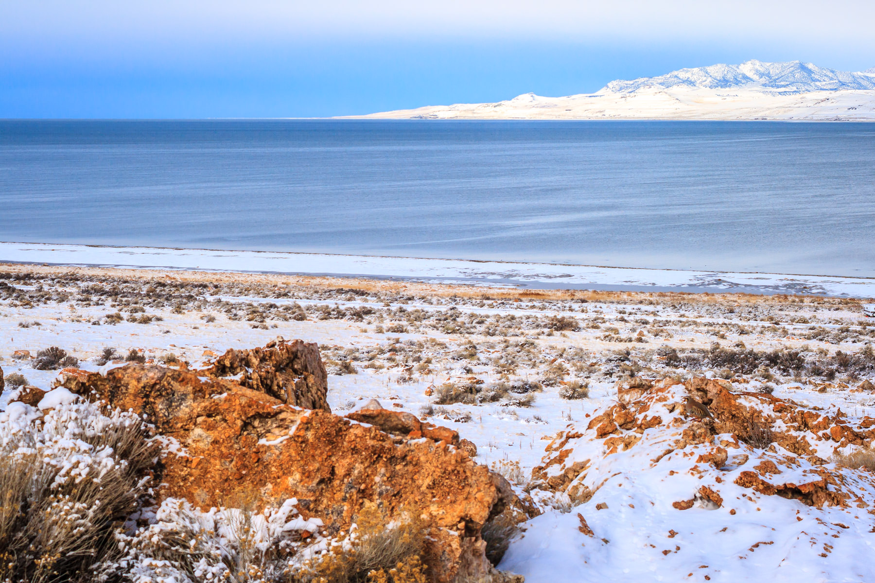 The brush-and-rock-covered winter shoreline of Antelope Island in Utah's Great Salt Lake