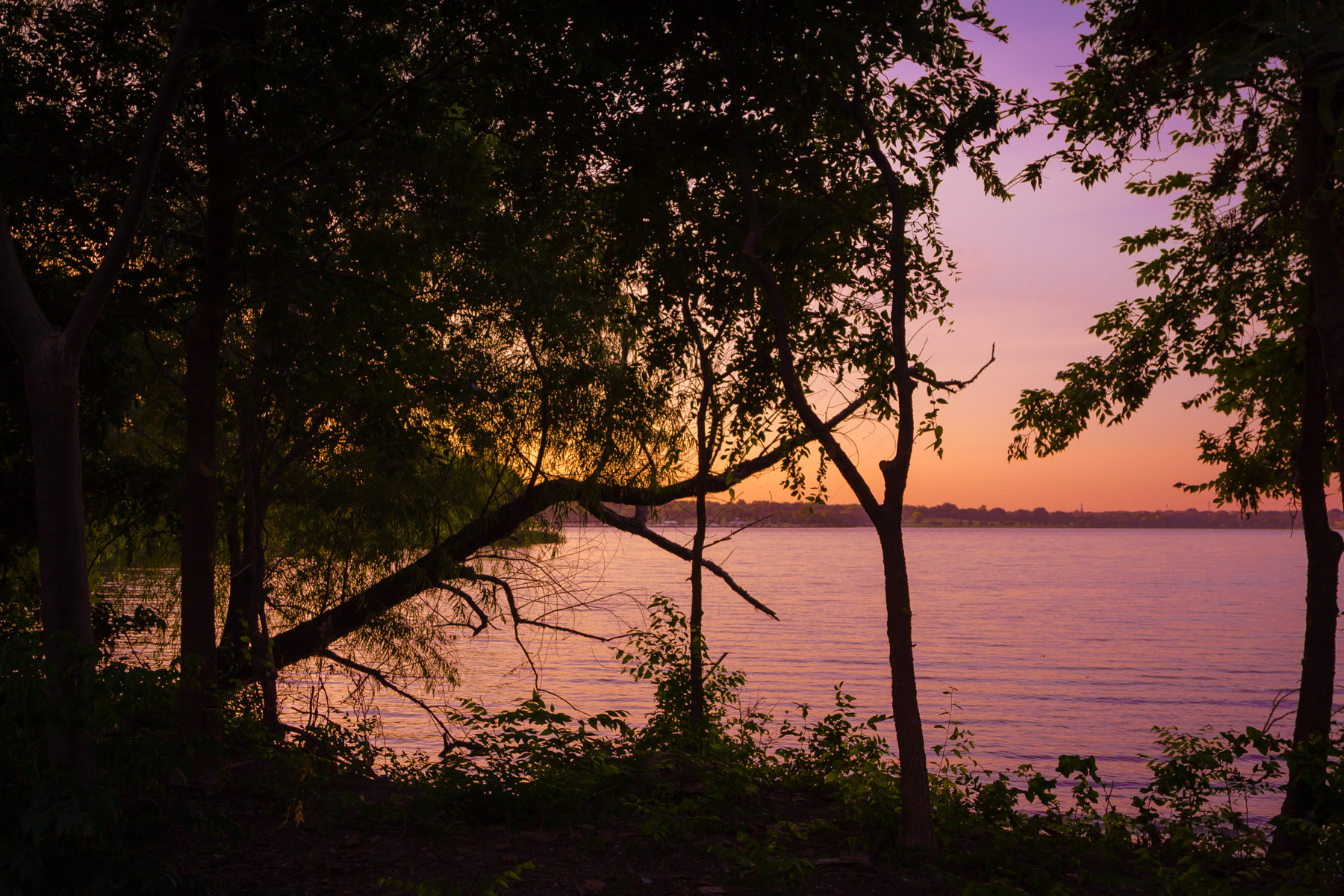 The first light of an early-Spring dawn illuminates Dallas' White Rock Lake.