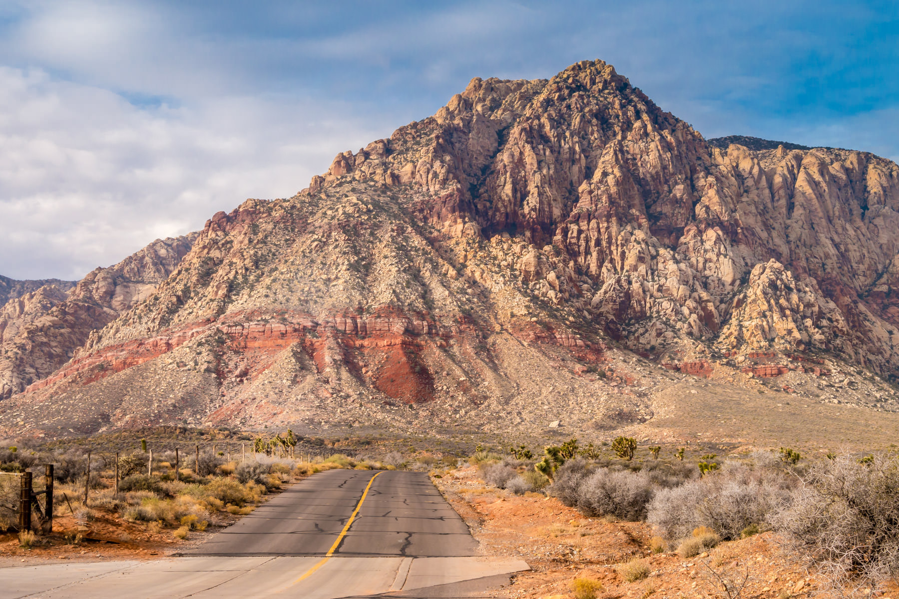 A desert road leads its way into Nevada's Spring Mountains at Spring Mountain Ranch.