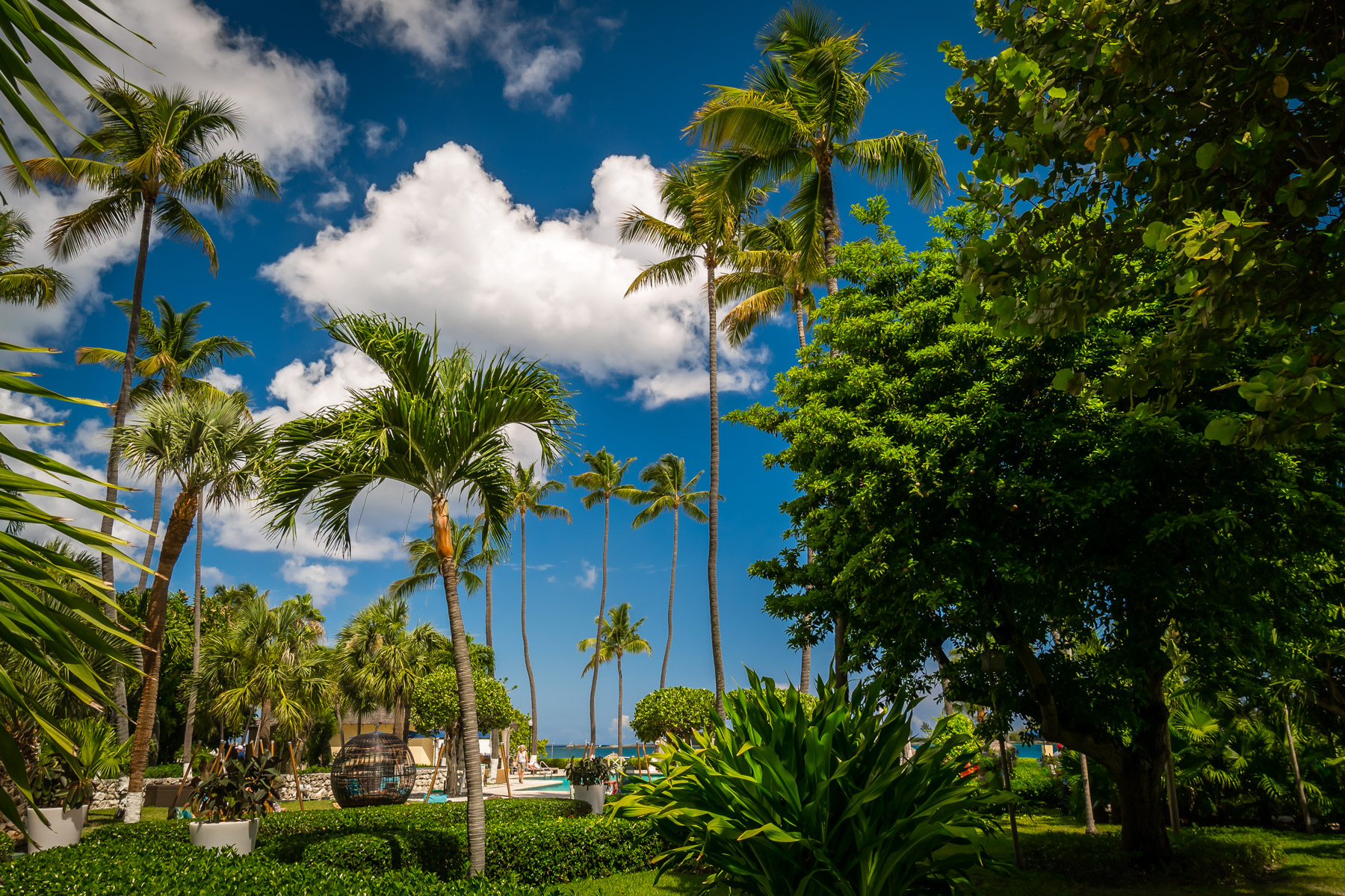 Palm trees tower over the grounds of the historicBritish Colonial Hilton in Nassau, Bahamas.