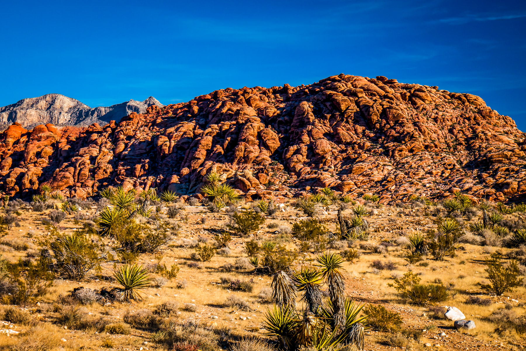 Some of the namesake rocks of Red Rock Canyon rise into the blue sky of the Nevada desert.