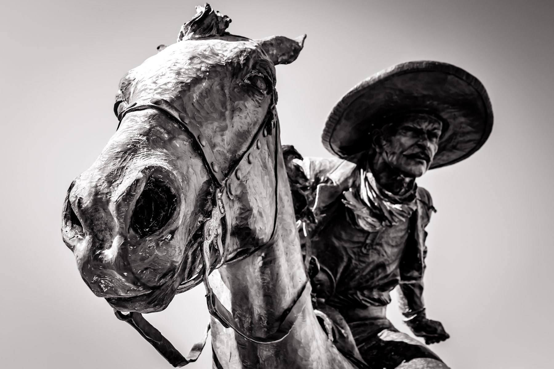 A bronze sculpture of a cowboy riding a horse makes up part of the larger collection of 49 bronze longhorn steer and 3 trail riders that commemorate the Shawnee Trail at Downtown Dallas' Pioneer Plaza.