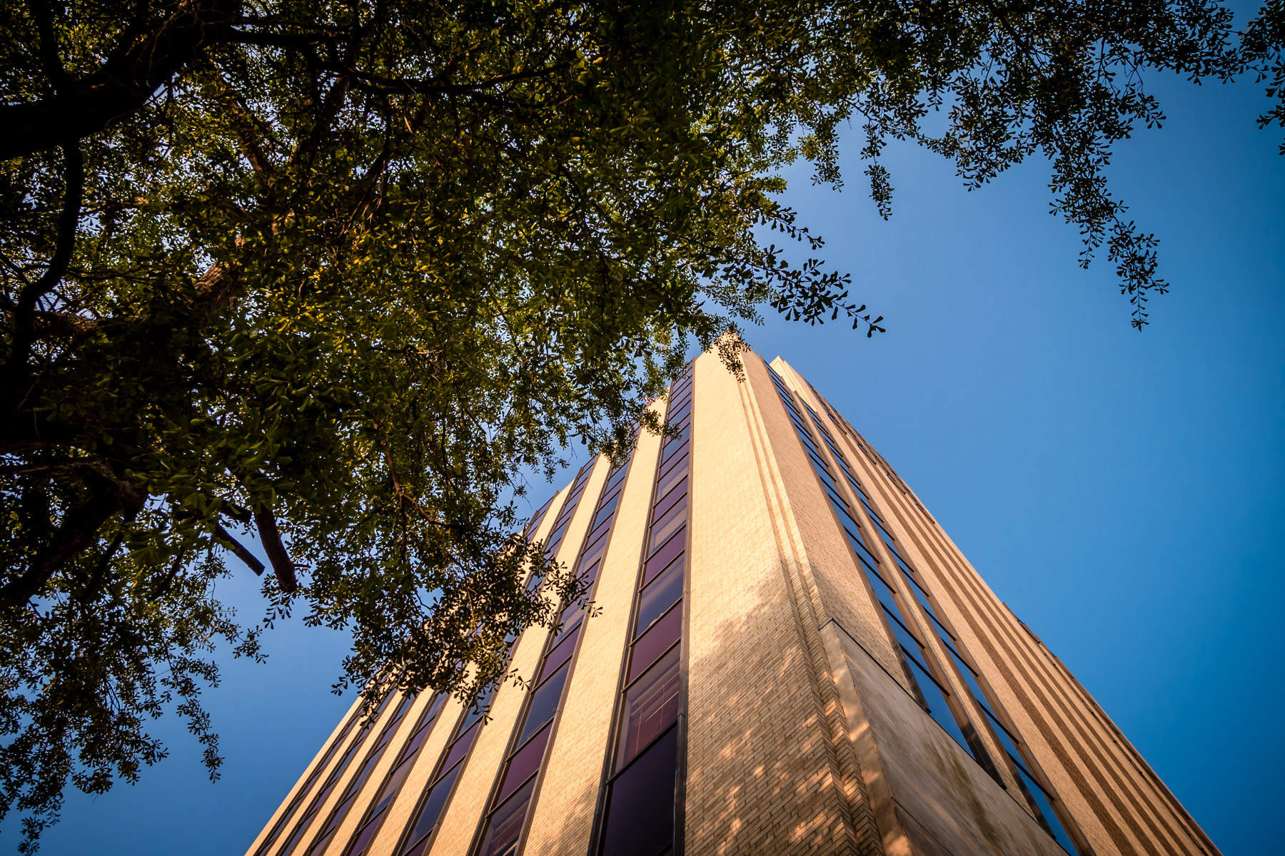 Tyler, Texas' People's Petroleum Building (built in 1933 as the People's National Bank) rises into the clear blue East Texas sky.