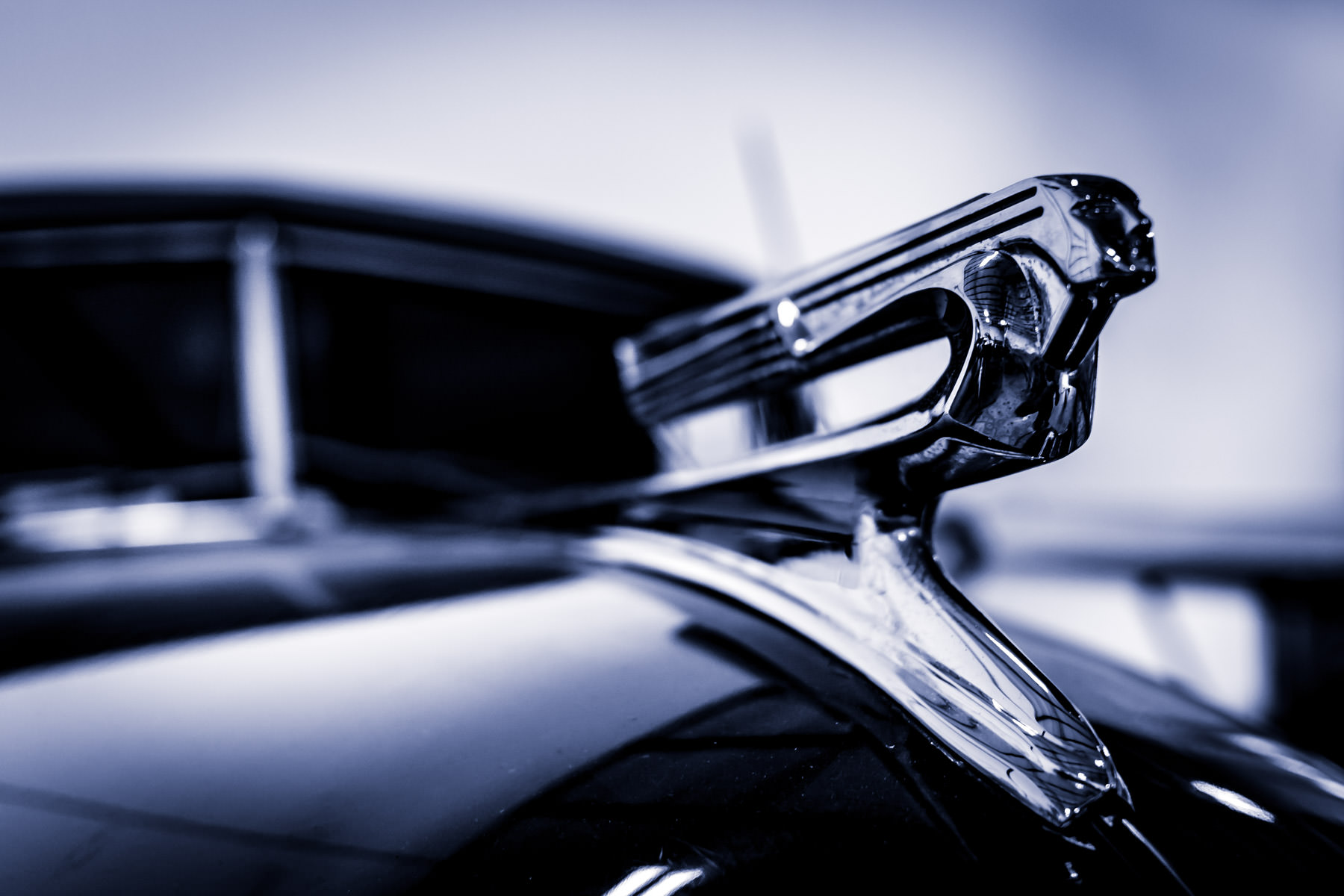 The hood ornament of a 1941 Chevrolet Special Deluxe in the collection of Addison, Texas' Cavanaugh Flight Museum.