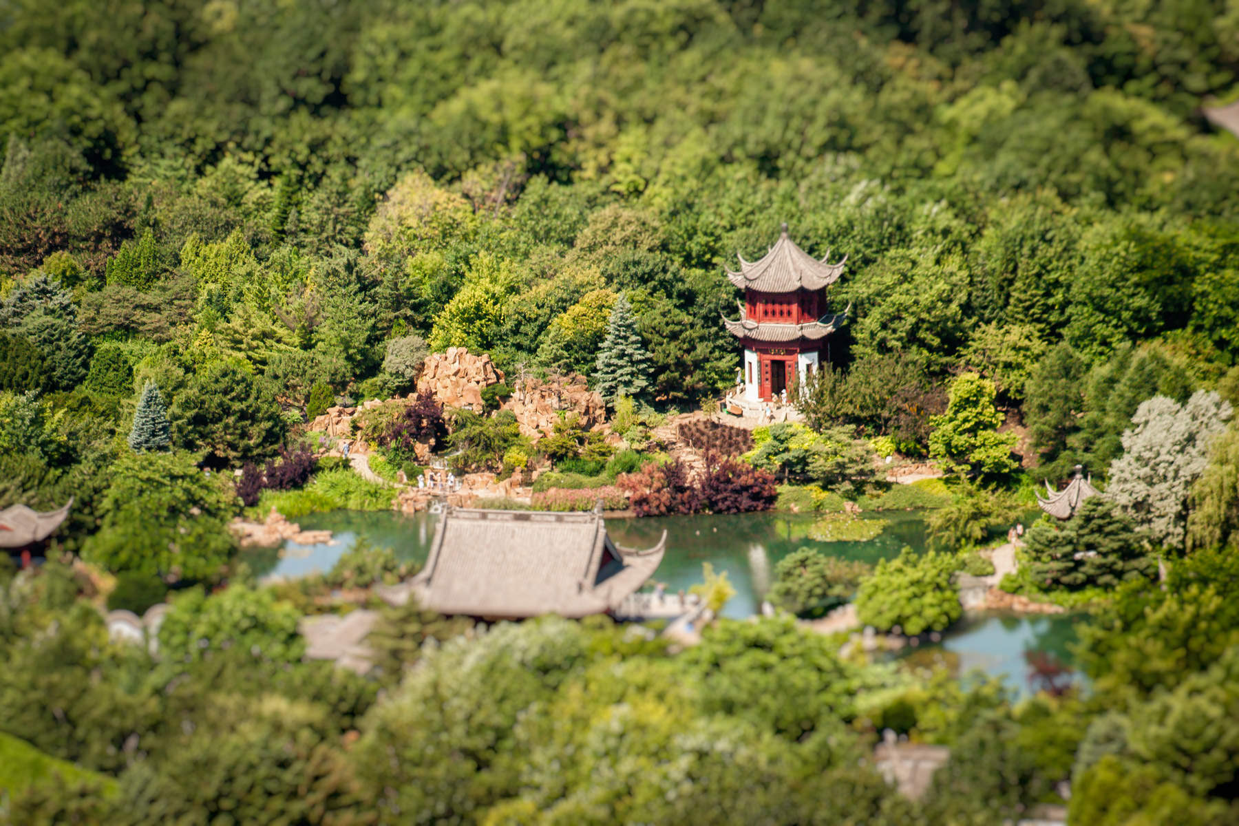 A pagoda nestled amongst the trees at the Chinese Garden in the Jardin botanique de Montréal.