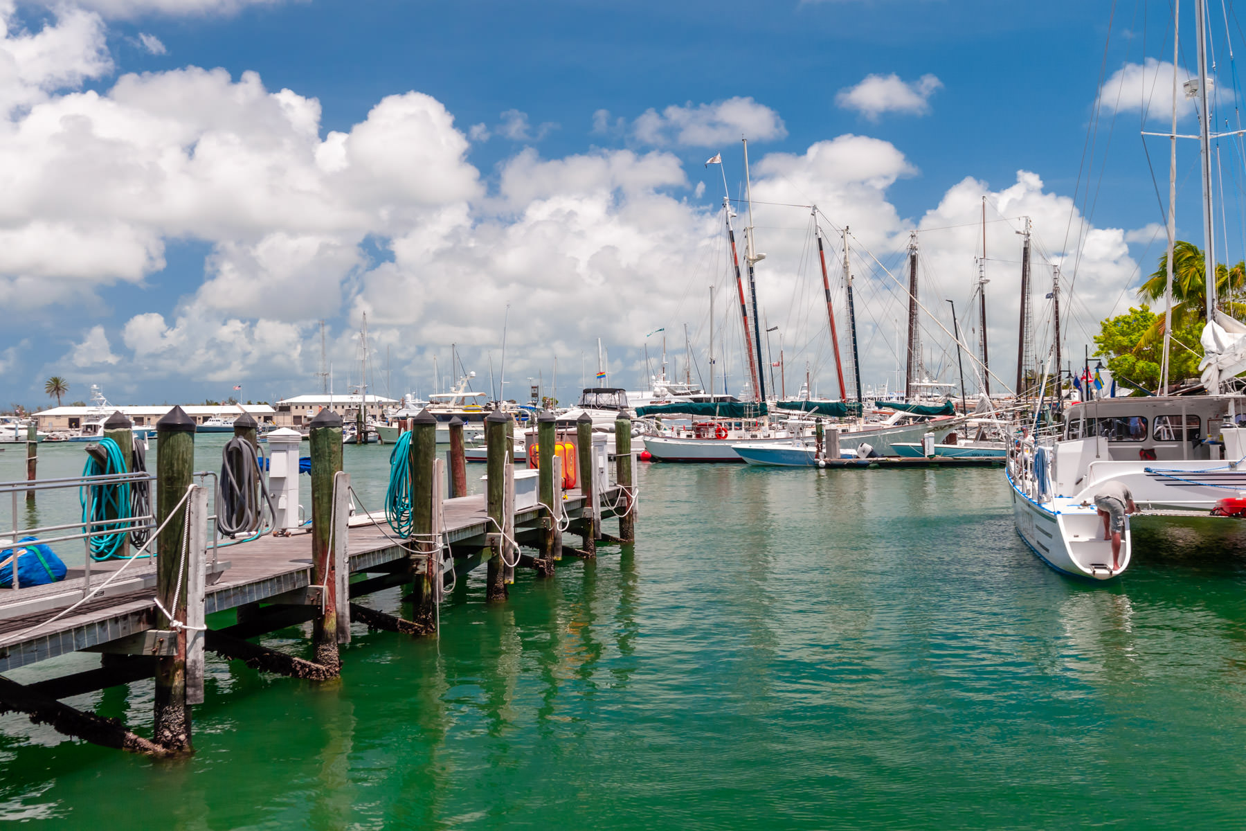 Boats docked in a harbor in Key West, Florida.