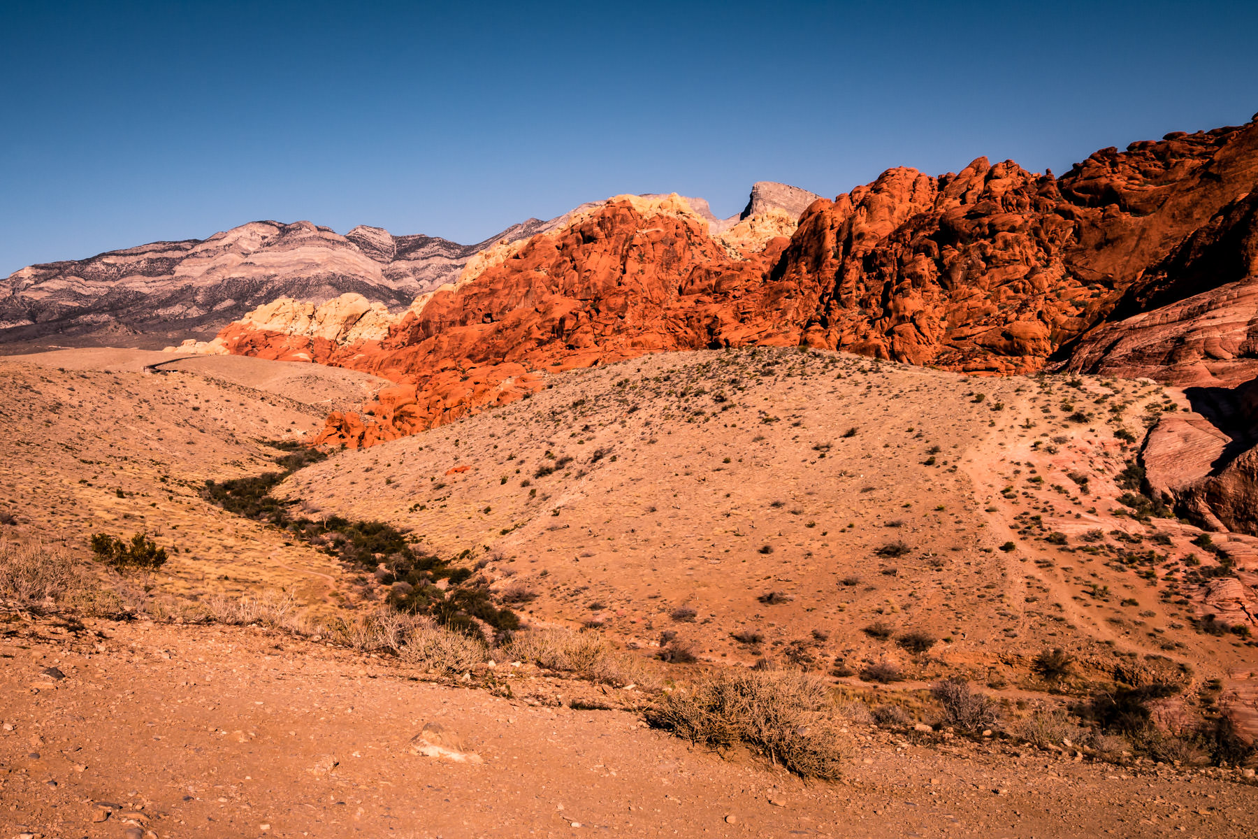 A dry creek bed snakes its way through Nevada's Red Rock Canyon.