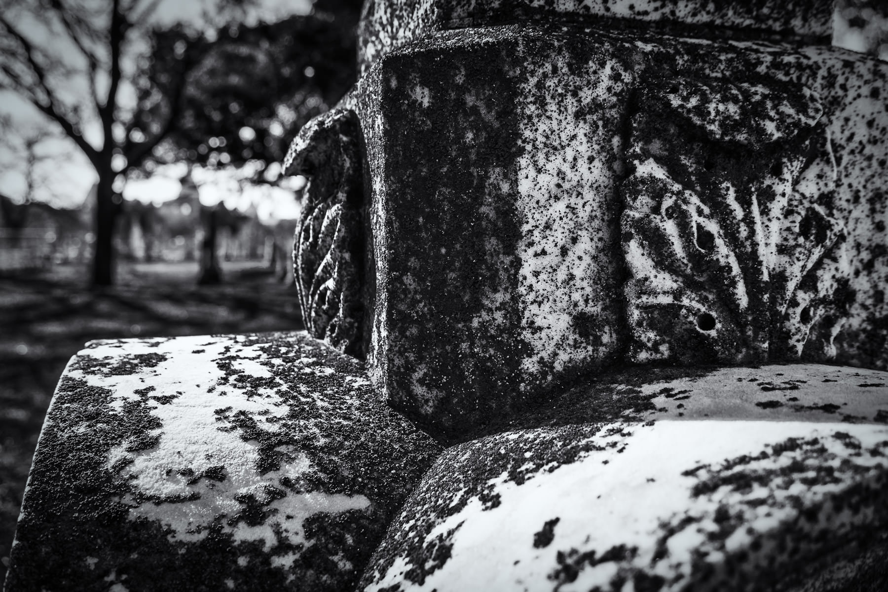 Lichens grow on a headstone at the First Street Cemetery in Waco, Texas.