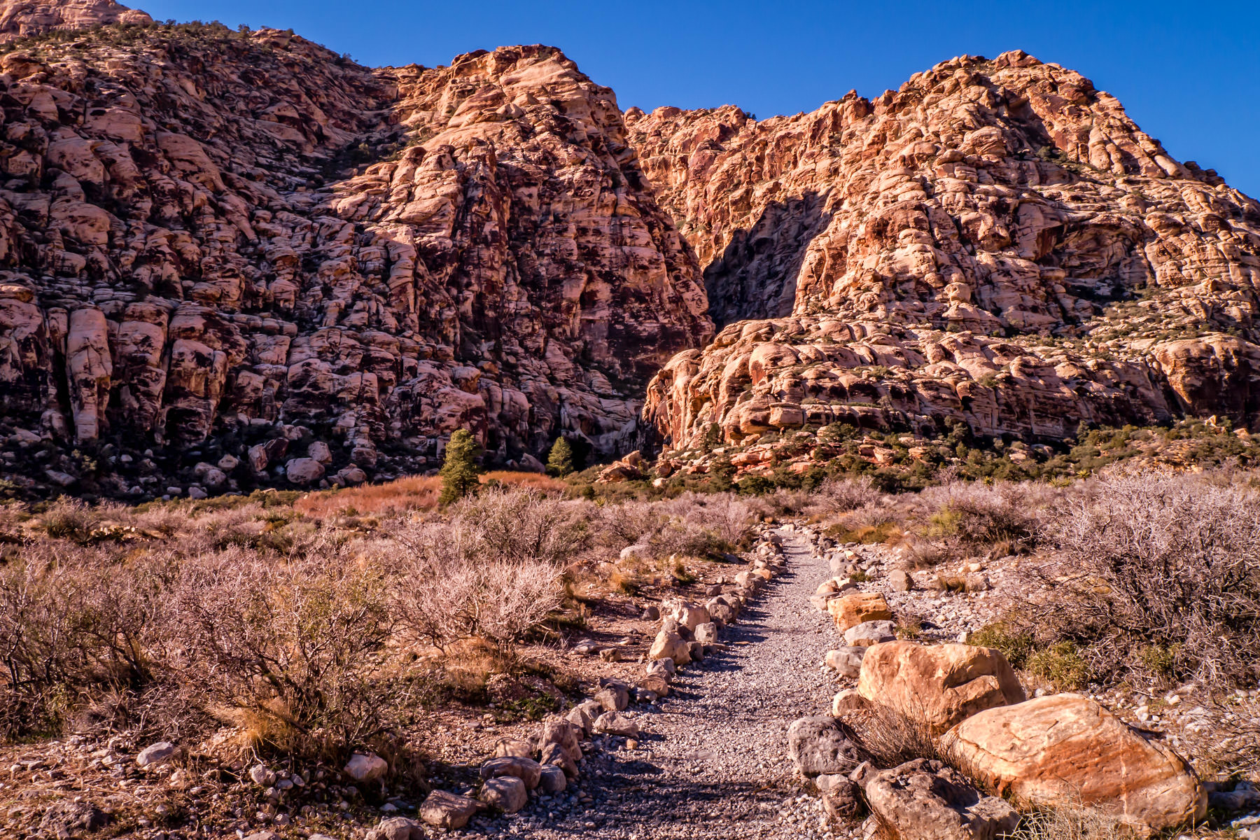 red rock canyon nevada path trail