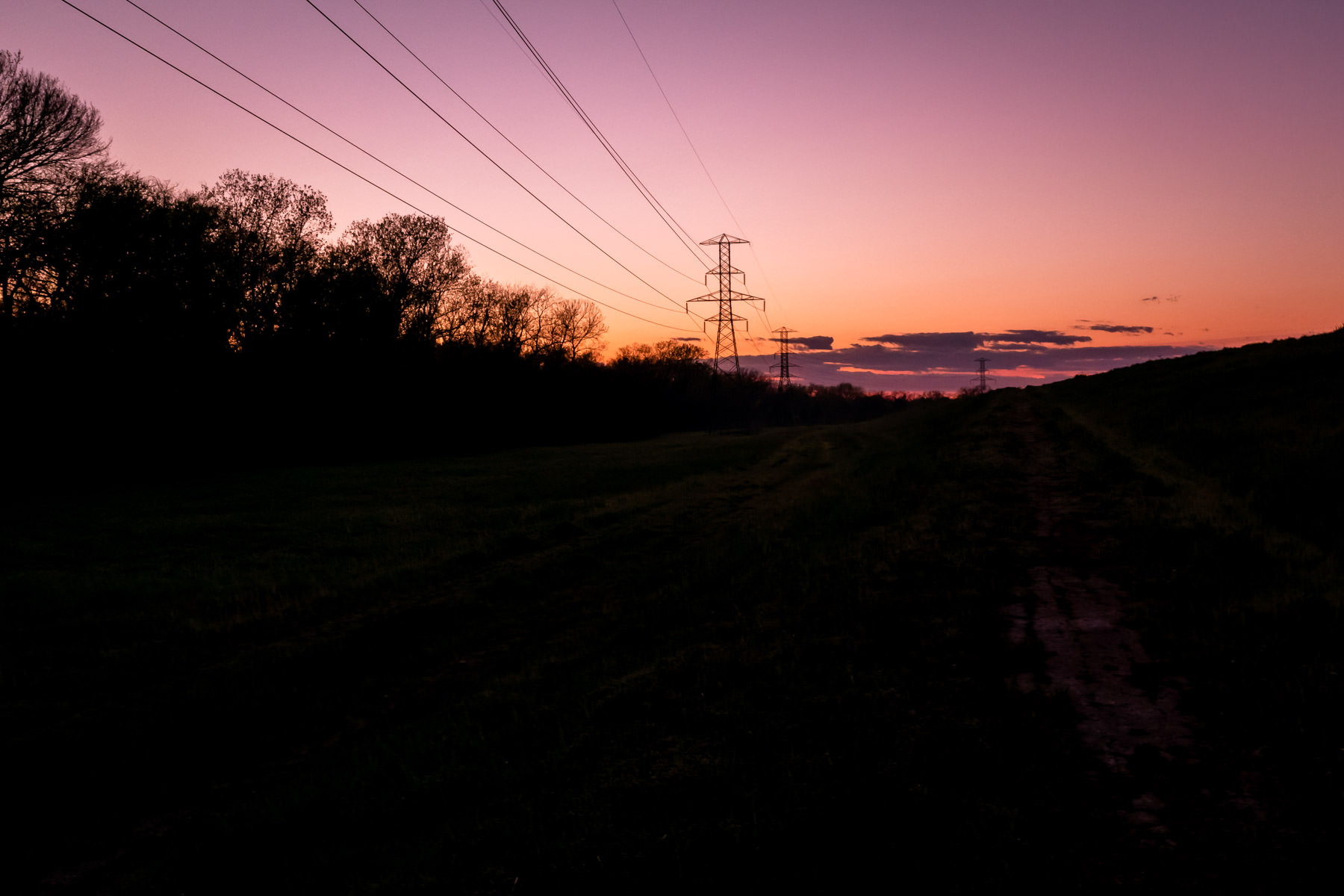 The early-morning sun illuminates power lines along the edge of the Great Trinity Forest in South Dallas.