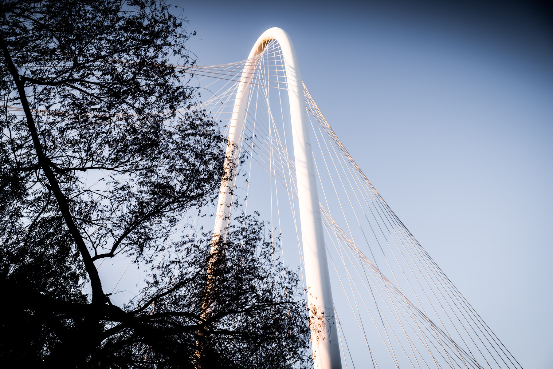 The Santiago Calatrava-designed Margaret Hunt Hill Bridge's arch rises into the sky over Dallas.
