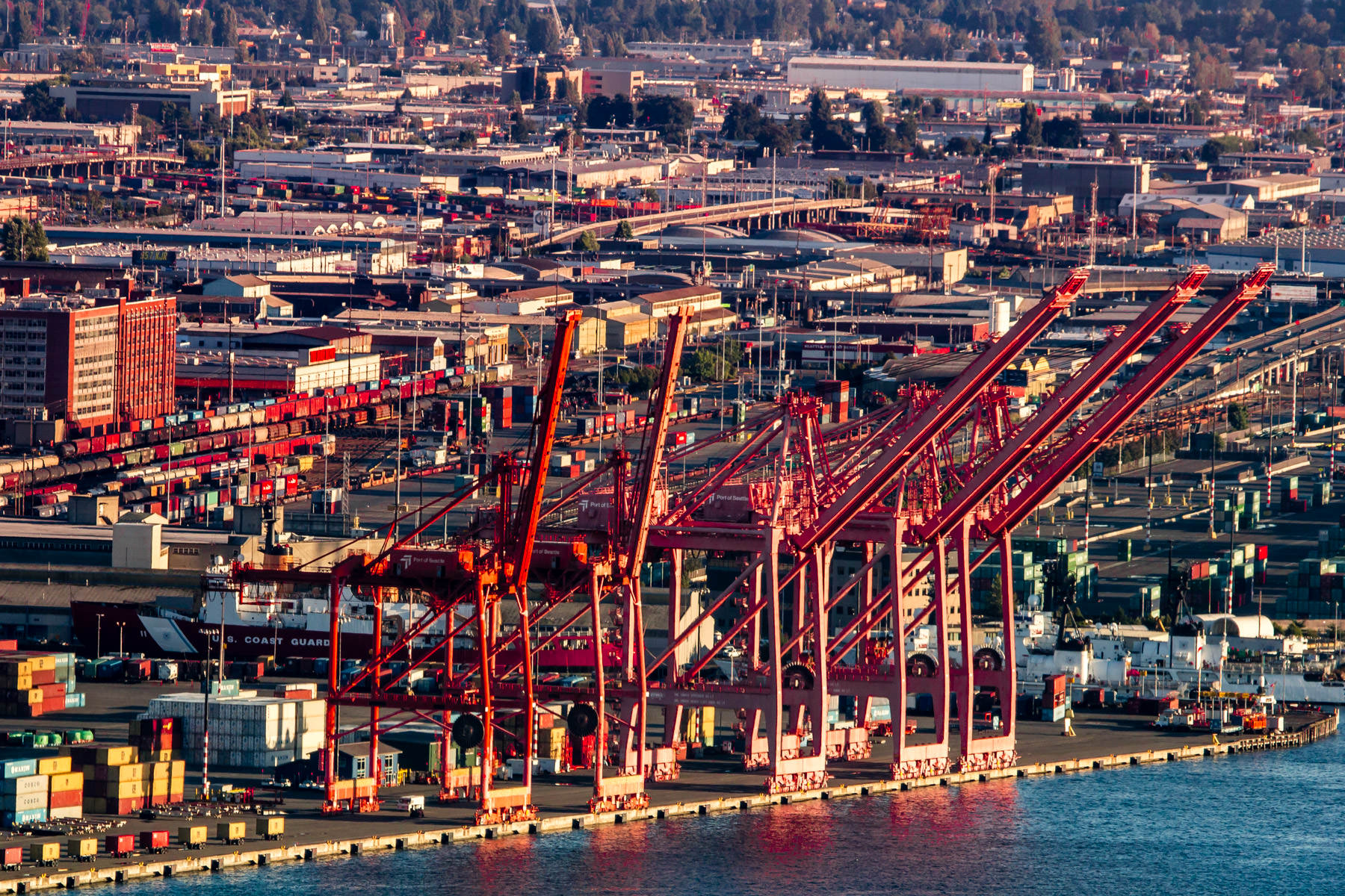 The evening sun illuminates five giant container cranes at the Port of Seattle.