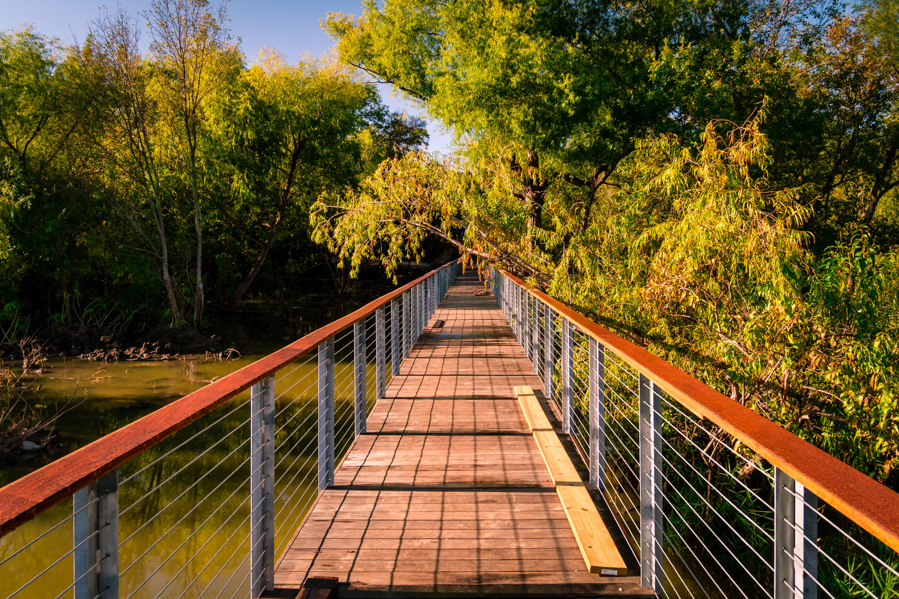 A wooden walkway leads into the forest at the Fort Worth Nature Center & Refuge, Texas.