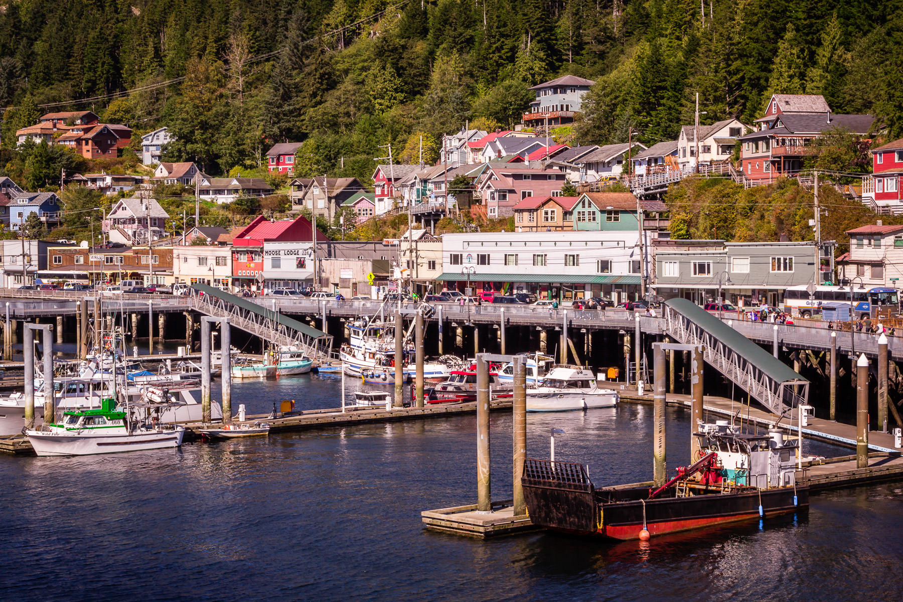 The busy harbor at Ketchikan, Alaska.