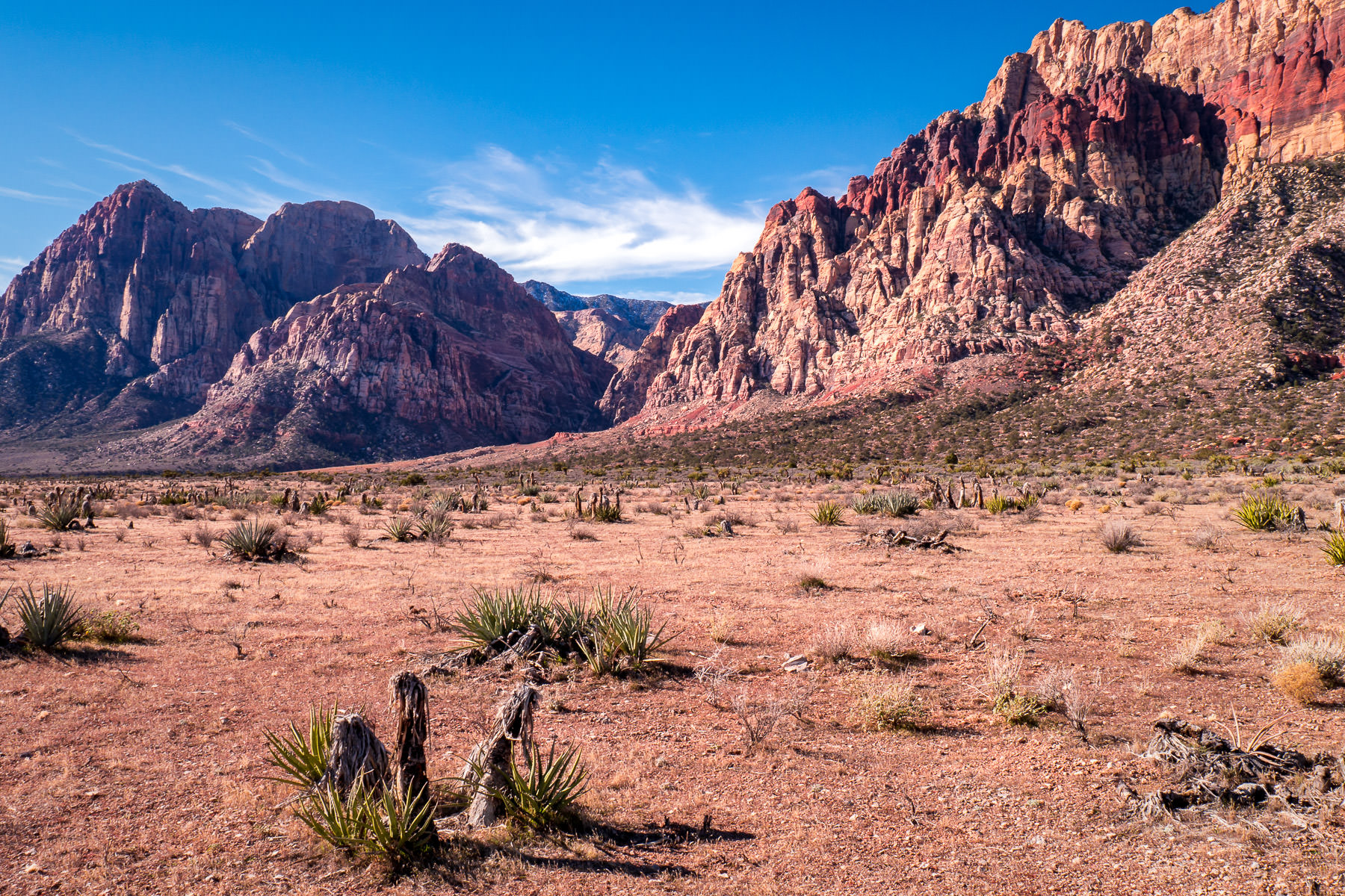 The arid, appropriately-named Red Rock Canyon, near Las Vegas.