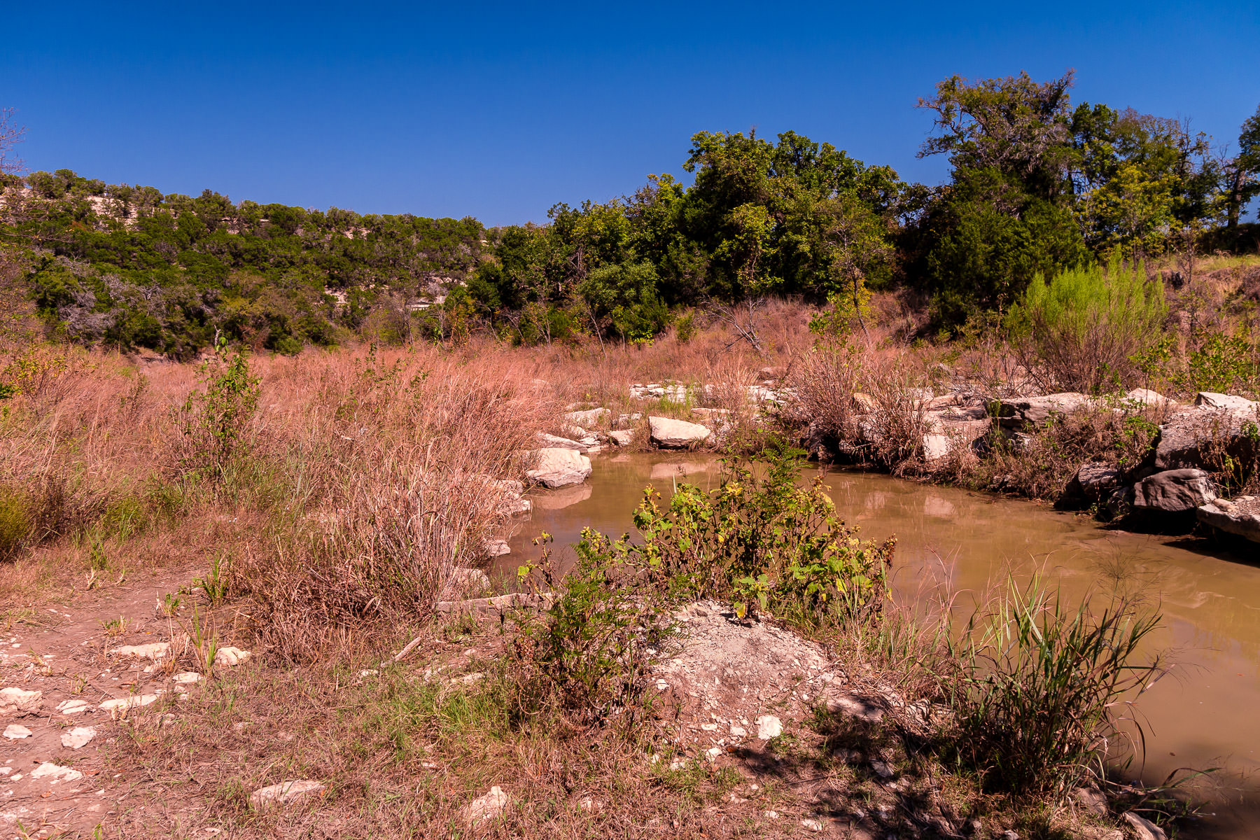 The Paluxy River runs almost dry at Dinosaur Valley State Park, Texas.