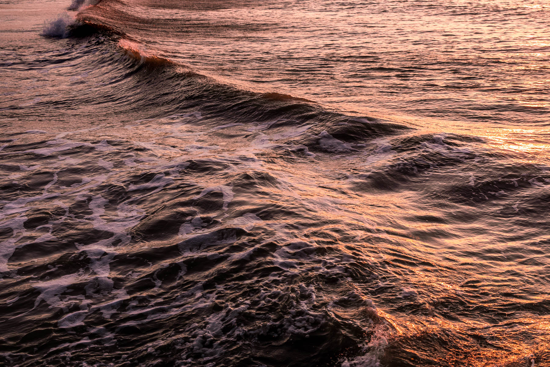 A wave rolling onto the beach at Galveston, Texas, catches the first light of the day.