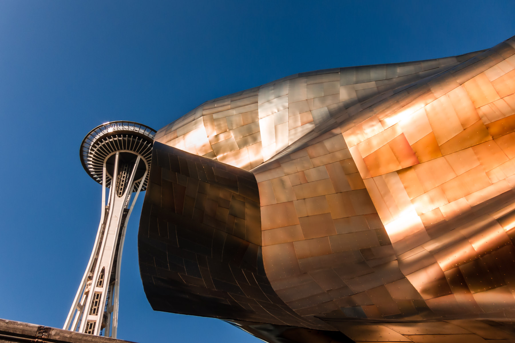 The Frank Gehry-designed Museum of Pop Culture (formerly the EMP Museum) obscures a portion of the adjacent Space Needle at the Seattle Center.