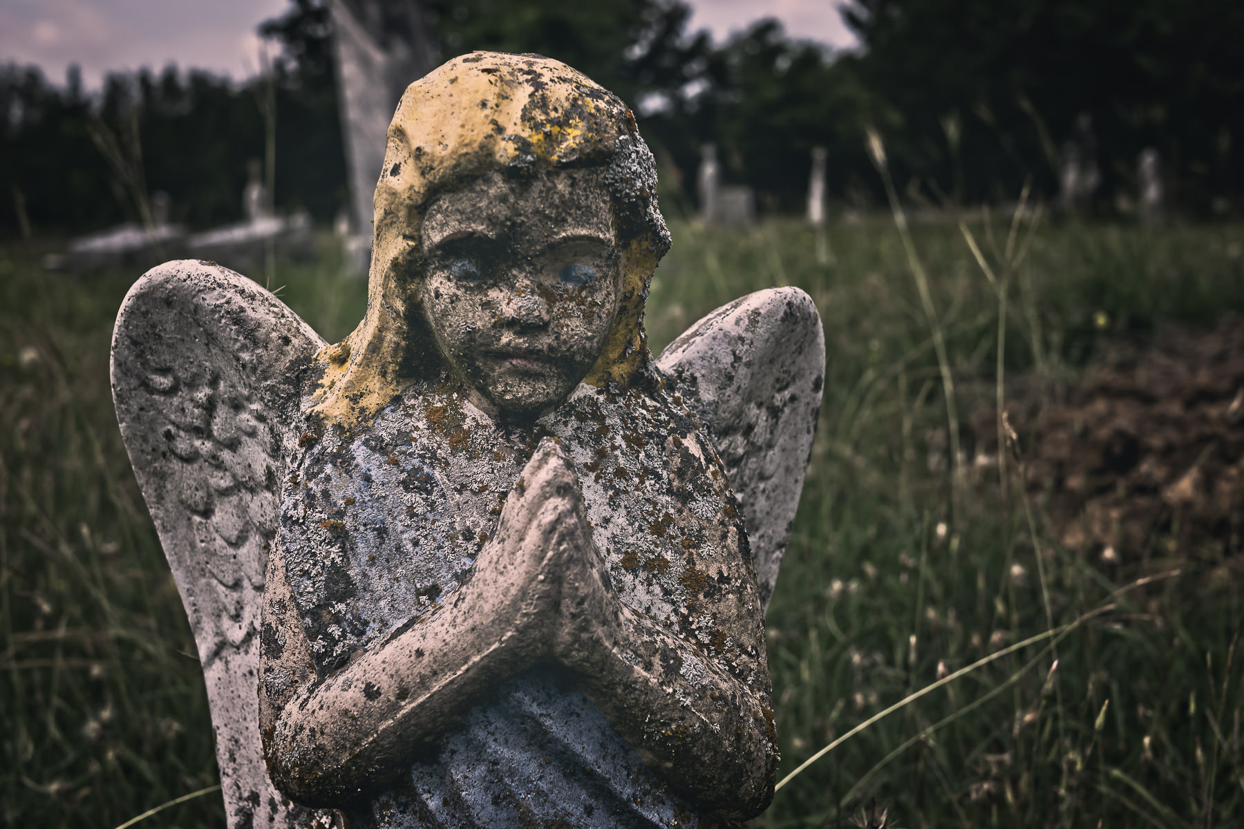 An old statue of an angel stands in the tall grass of a Terrell, Texas, cemetery.