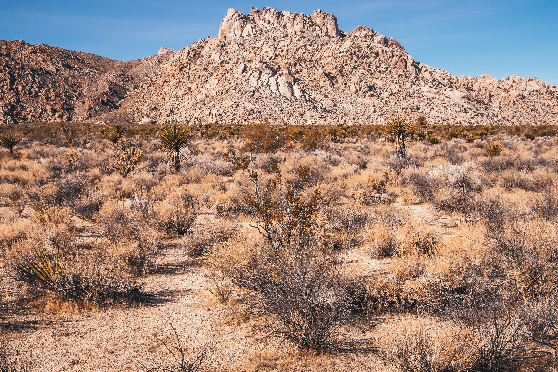 A rocky, jagged hill rises from the dry desert at the Mojave National Preserve, California.
