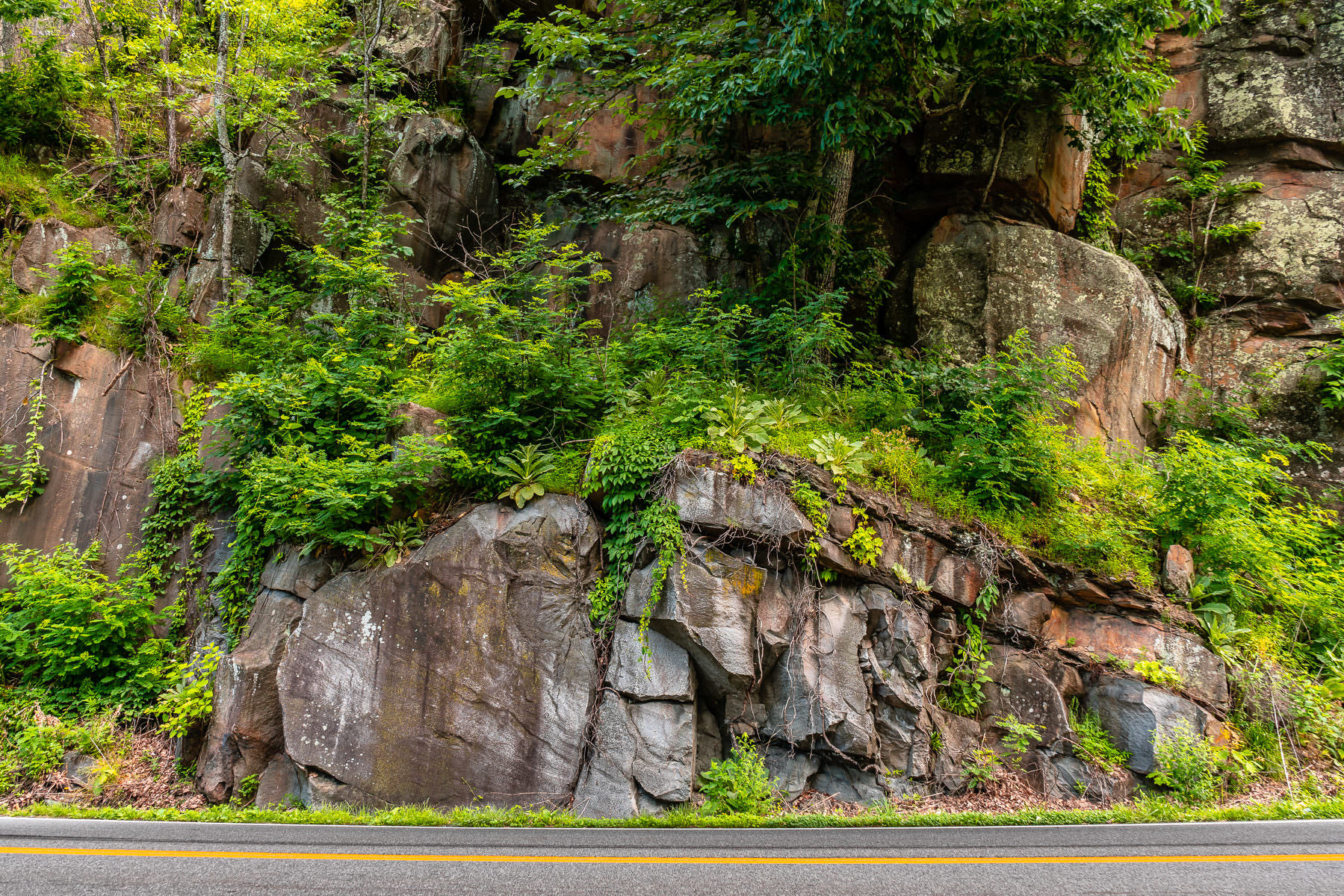 A rocky outcropping hugs the side of a road in the Great Smoky Mountains National Park, Tennessee.