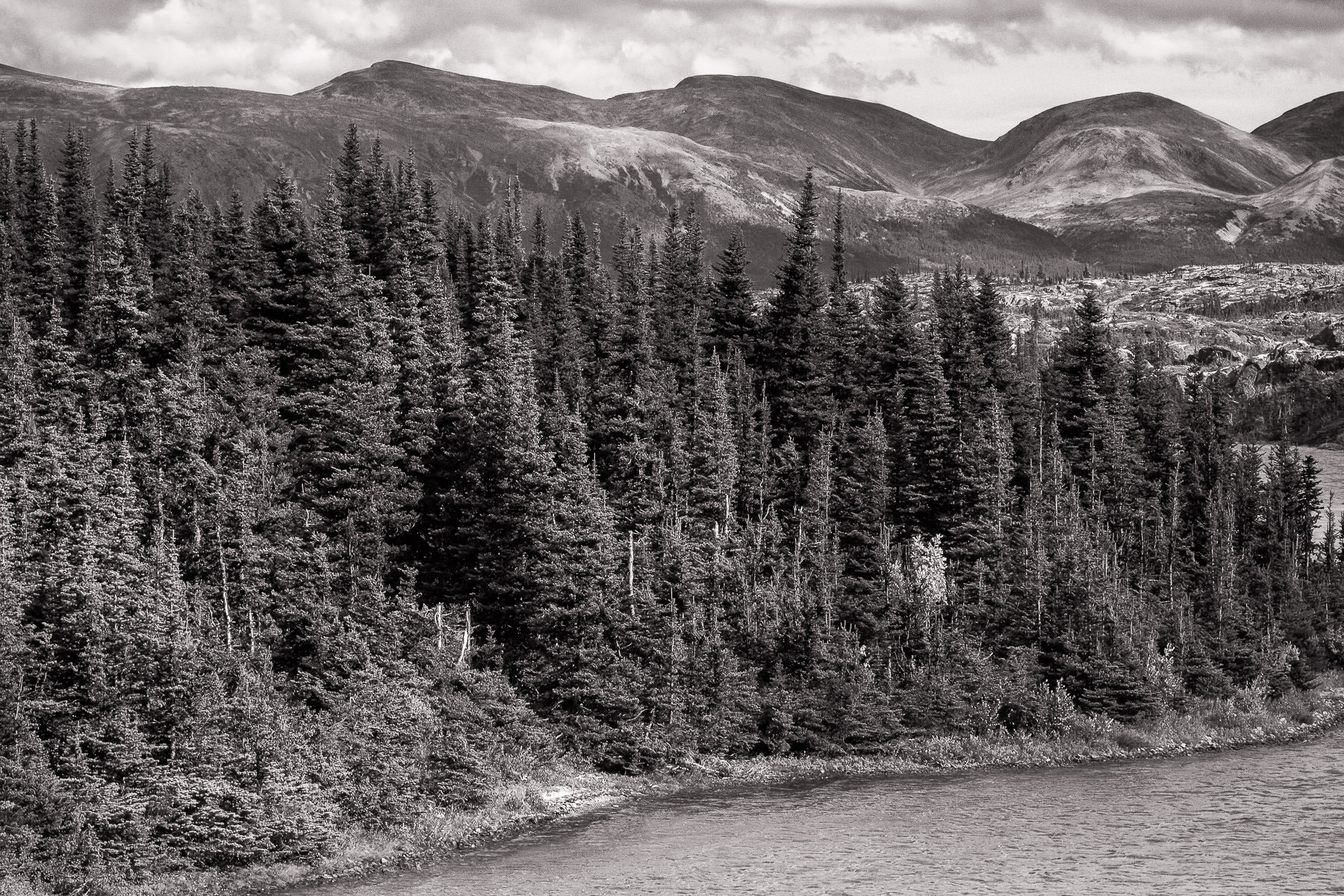 Trees grow along the shore of Lake Bernard in British Columbia's Stikine Region.