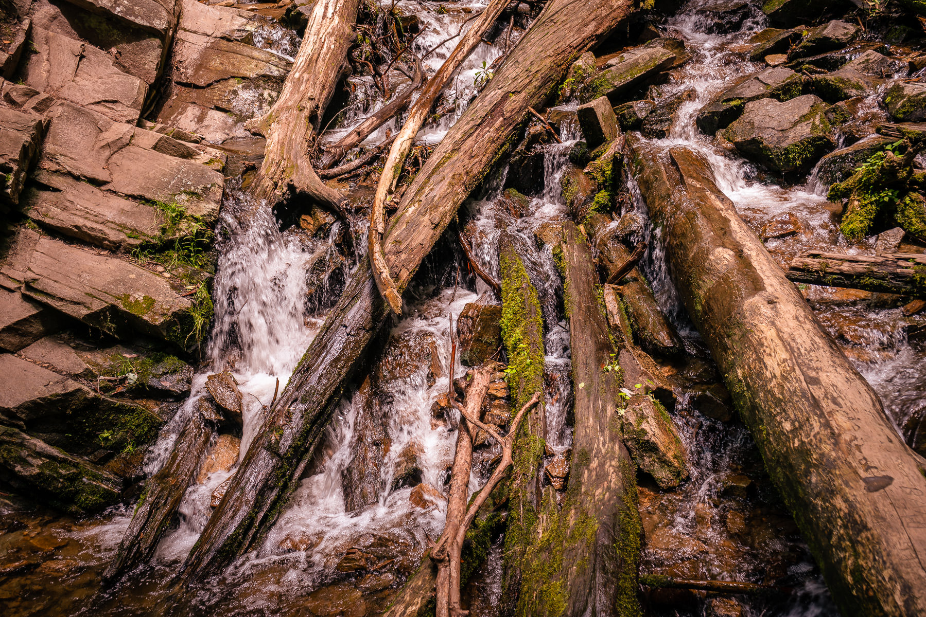 Water flows past logs at the base of Mingo Falls, Cherokee, North Carolina.