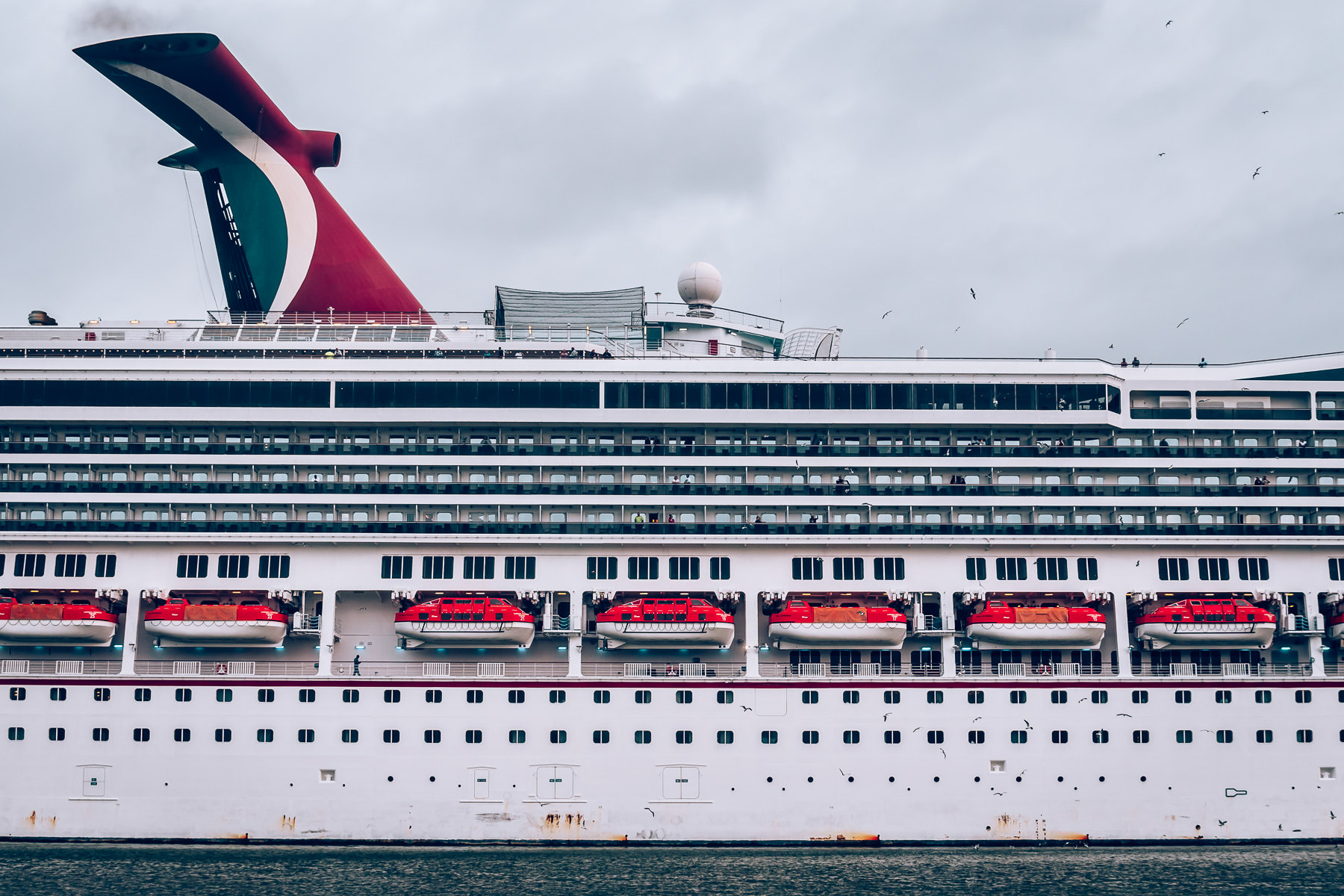 The side of the cruise shipCarnival Freedom as it departs Galveston, Texas.