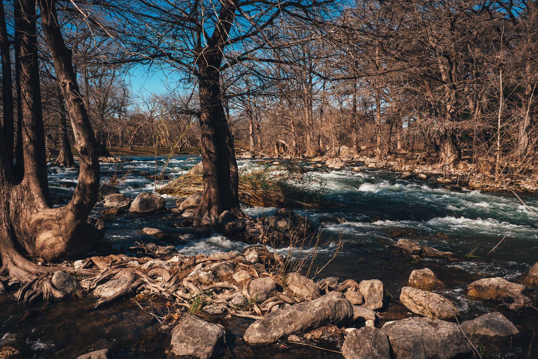 The Guadalupe River flows over rocks near Gruene, Texas.