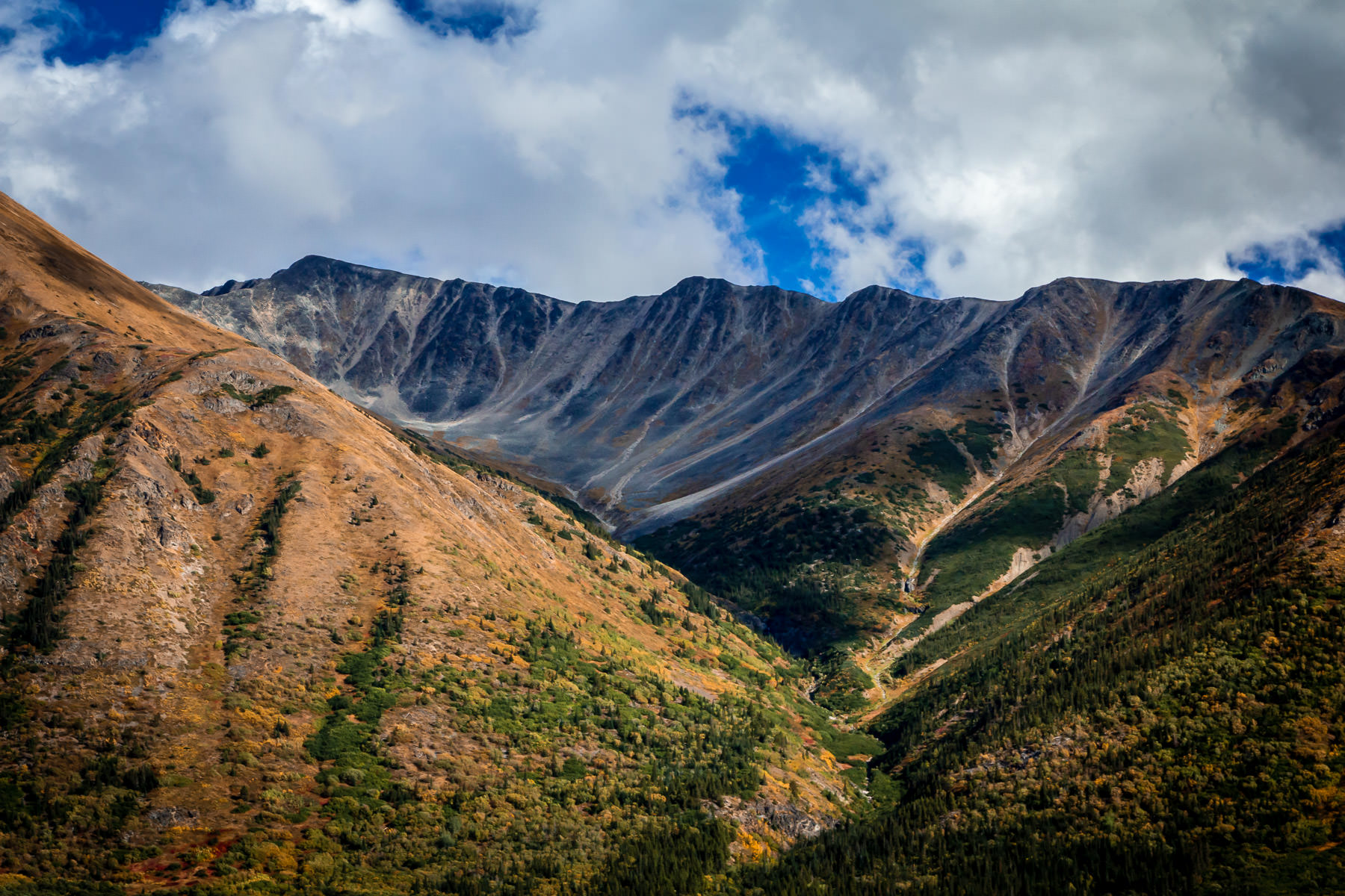 The mountainous landscape of British Columbia's Stikine Region.