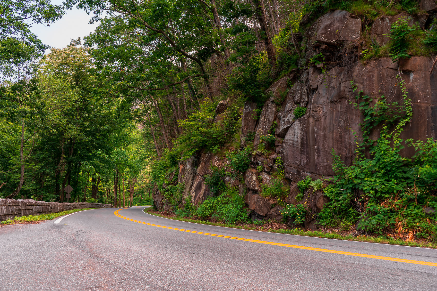 A road curves around a mountainside in Tennessee's Great Smoky Mountains National Park.