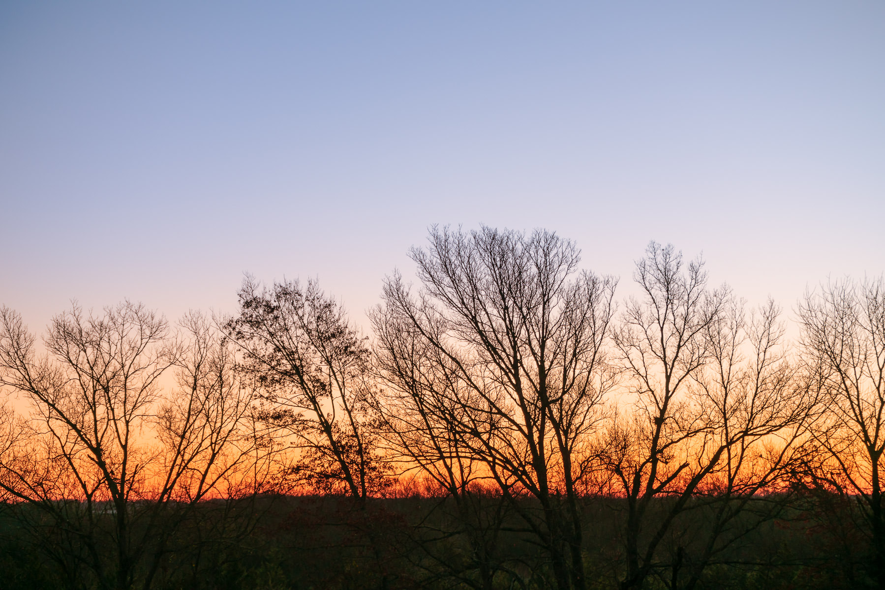 The sun rises on a tree-topped ridge near McKinney, Texas.