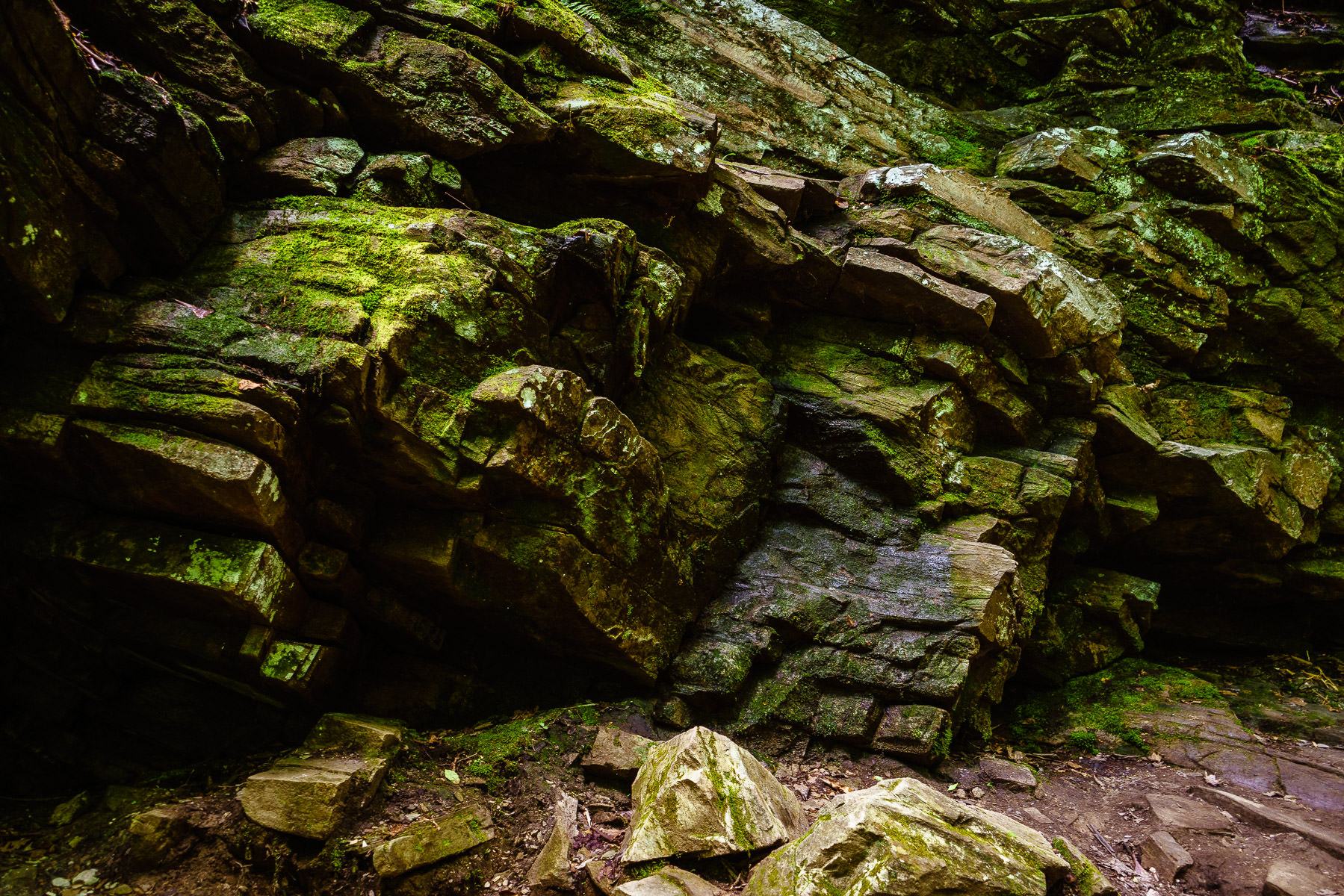 Moss-covered rocks found in the forest near Cherokee, North Carolina.