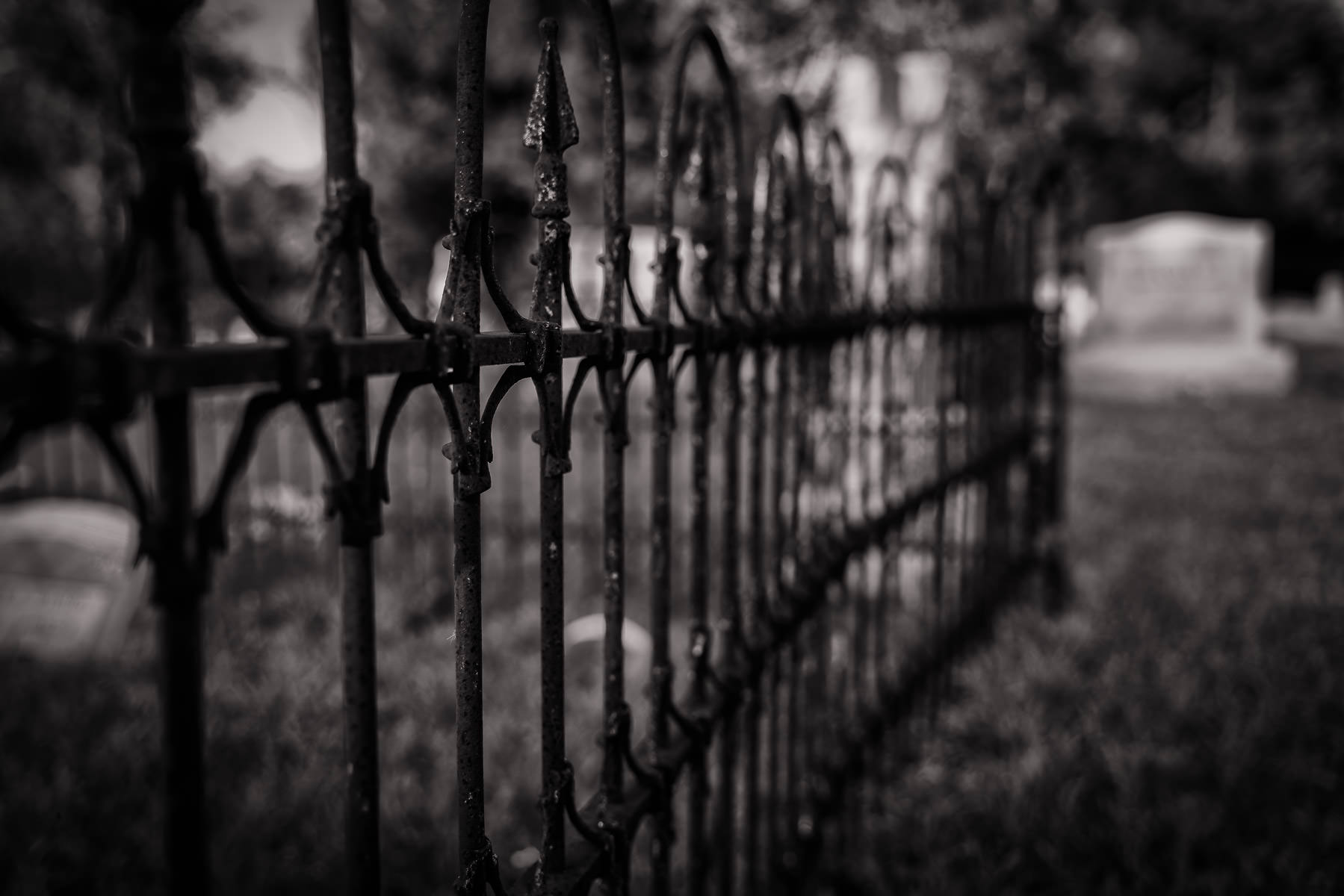 A rusting iron fence found in a cemetery near Chambersville, Texas.