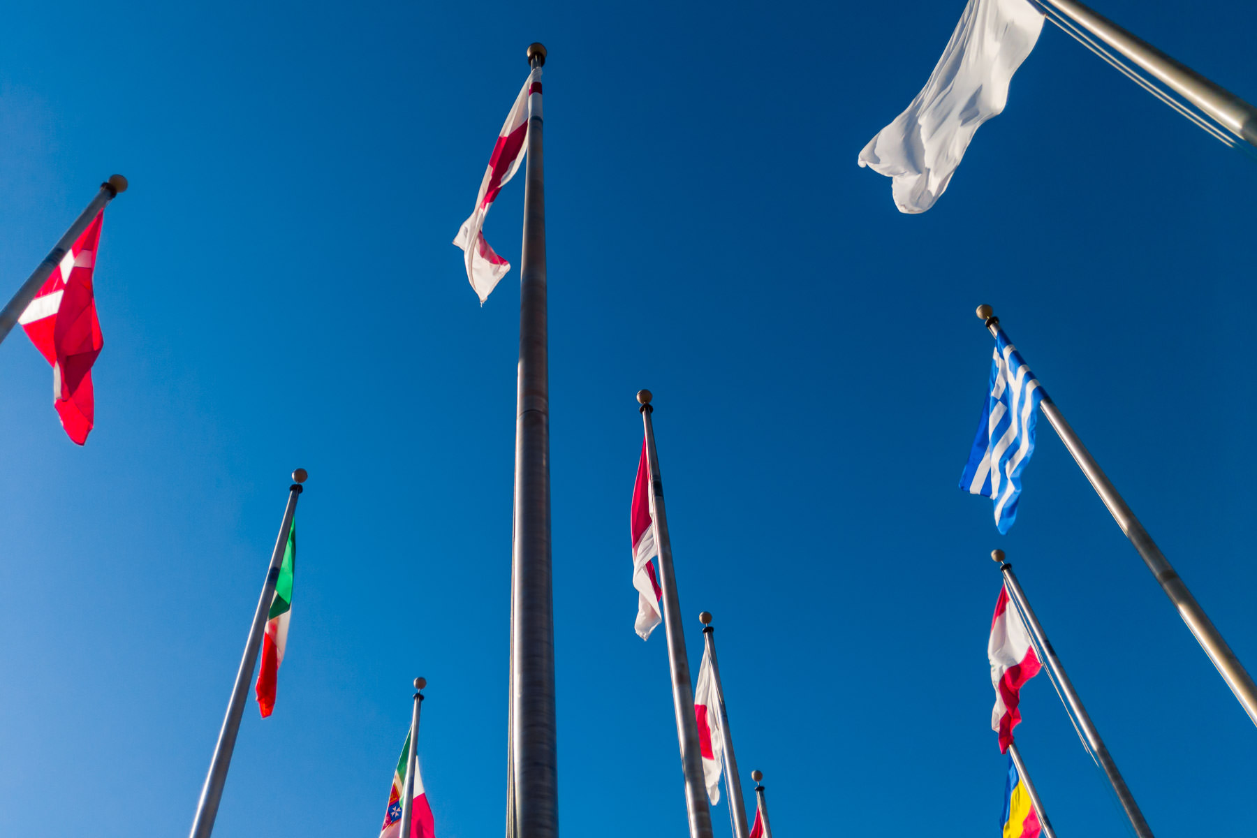 Various national flags wave in the wind at the Institute of Texan Cultures in San Antonio.