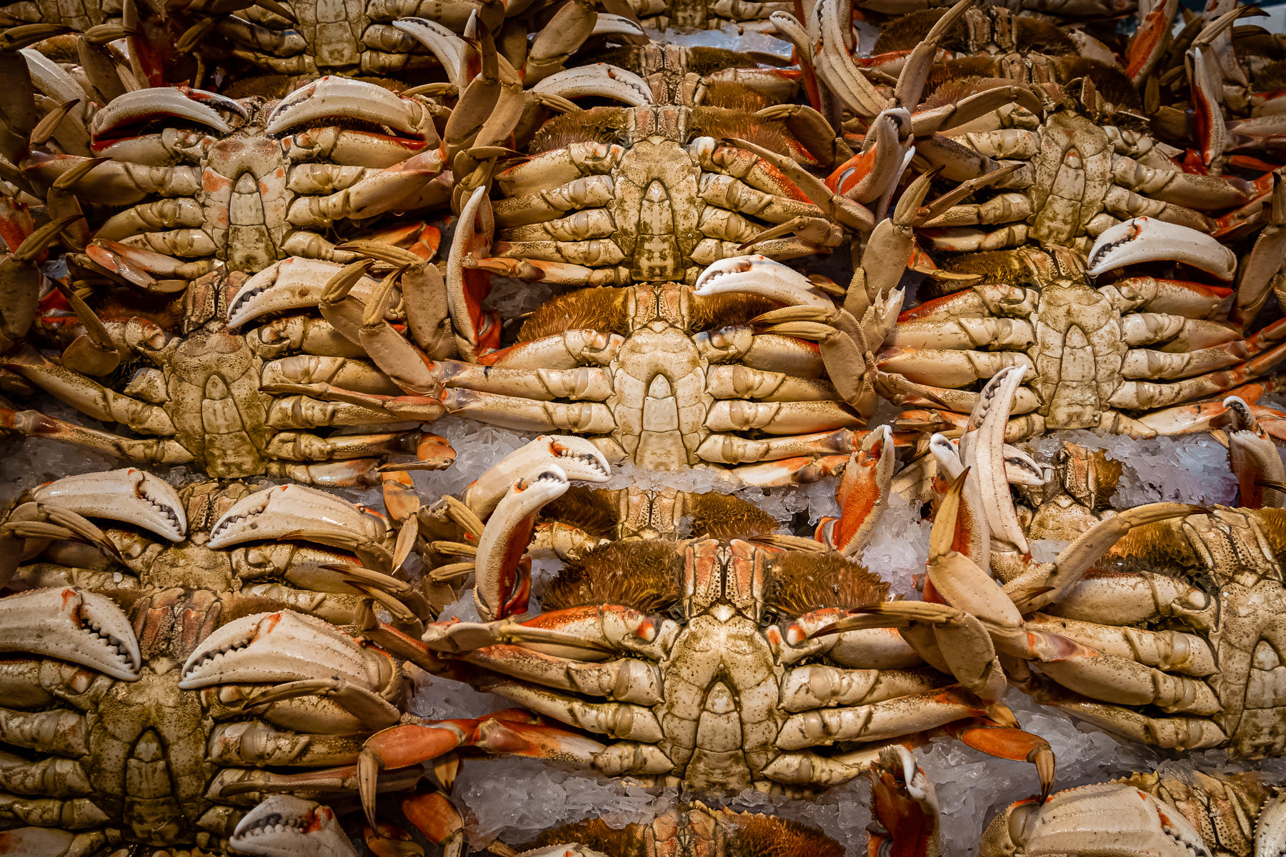 Crabs for sale at Seattle's Pike Place Market.