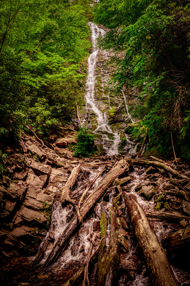Mingo Falls pours down a cliff in a North Carolina forest near the town of Cherokee.