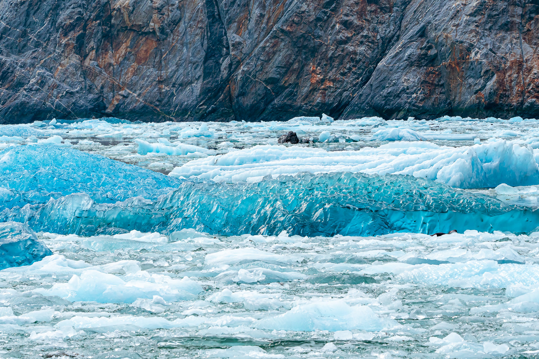Cerulean ice floats in Tracy Arm Fjord, Alaska, near the South Sawyer Glacier.