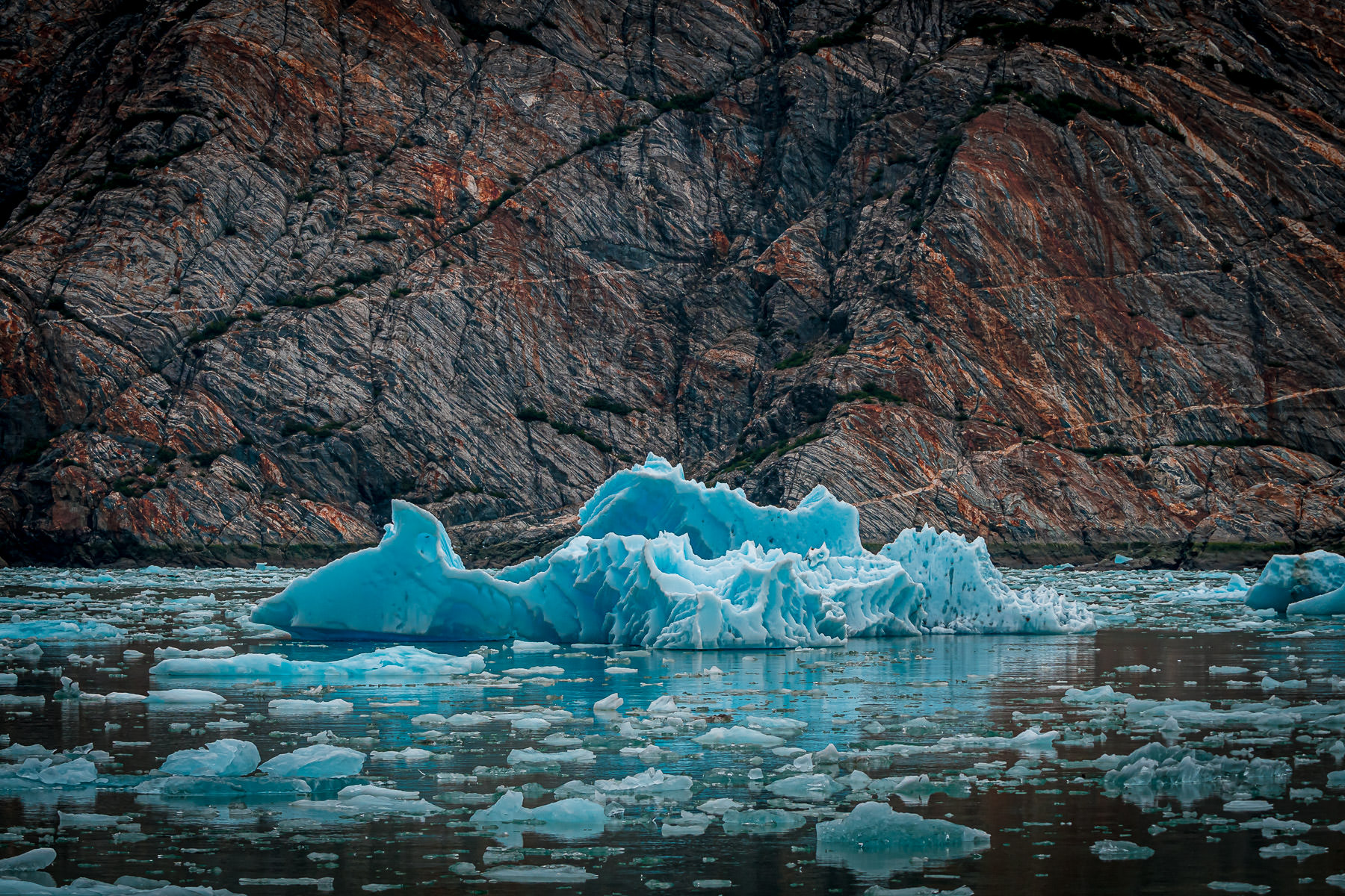 Ice floes float in Alaska's Tracy Arm Fjord.