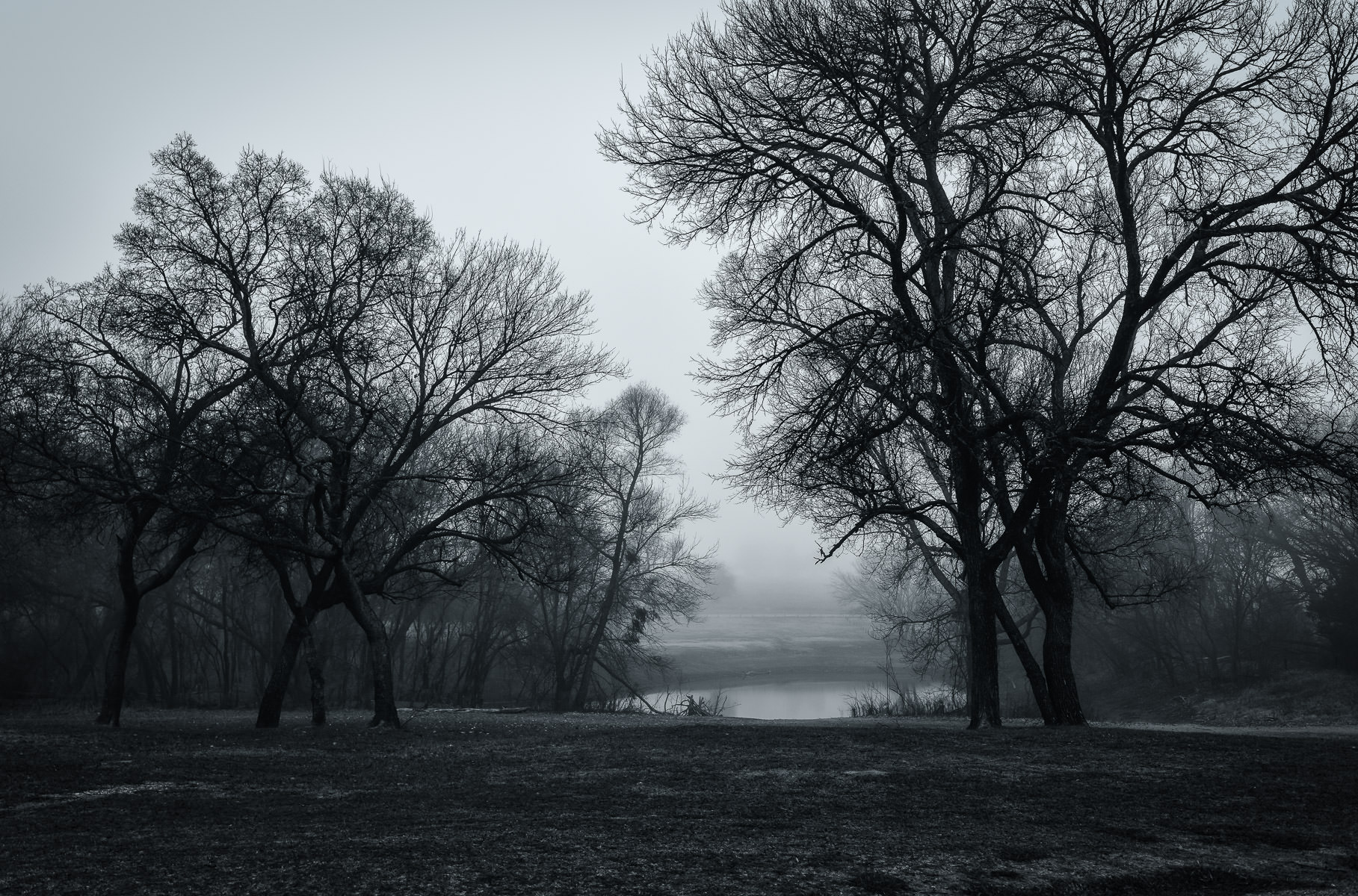 McKinney, Texas' Erwin Park in the early-morning fog.
